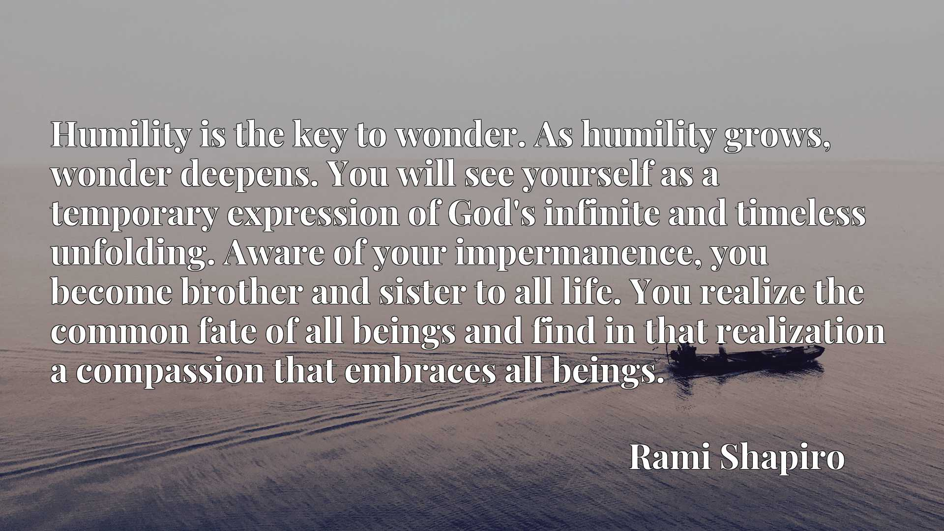 Humility is the key to wonder. As humility grows, wonder deepens. You will see yourself as a temporary expression of God's infinite and timeless unfolding. Aware of your impermanence, you become brother and sister to all life. You realize the common fate of all beings and find in that realization a compassion that embraces all beings.