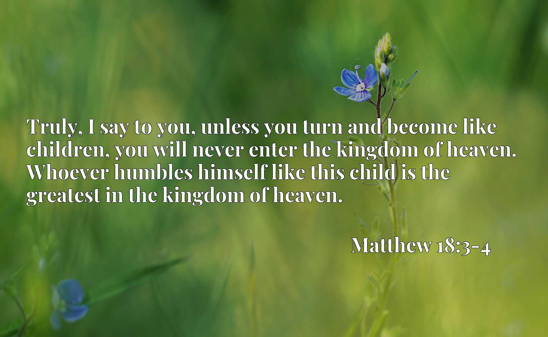 Truly, I say to you, unless you turn and become like children, you will never enter the kingdom of heaven. Whoever humbles himself like this child is the greatest in the kingdom of heaven.