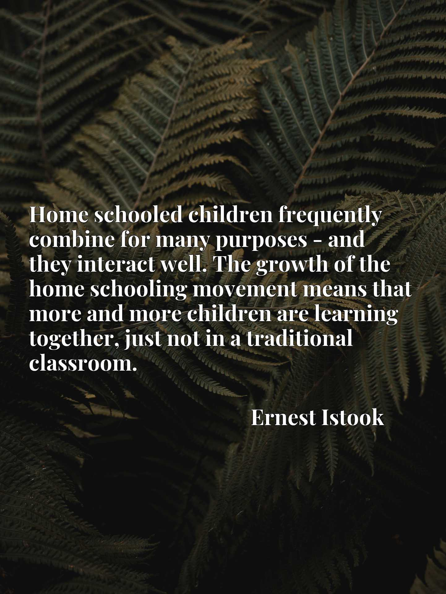 Home schooled children frequently combine for many purposes - and they interact well. The growth of the home schooling movement means that more and more children are learning together, just not in a traditional classroom.