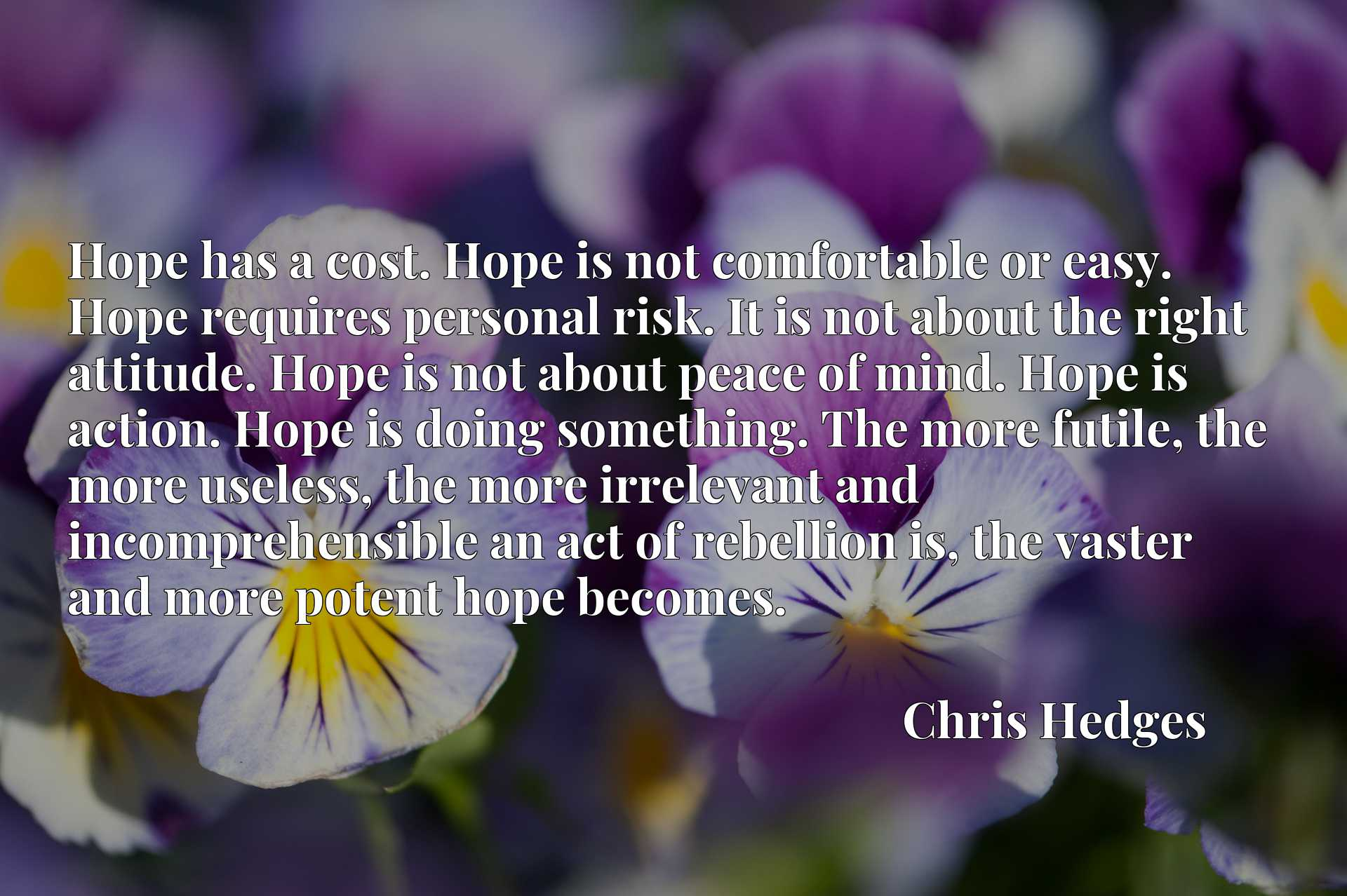Hope has a cost. Hope is not comfortable or easy. Hope requires personal risk. It is not about the right attitude. Hope is not about peace of mind. Hope is action. Hope is doing something. The more futile, the more useless, the more irrelevant and incomprehensible an act of rebellion is, the vaster and more potent hope becomes.
