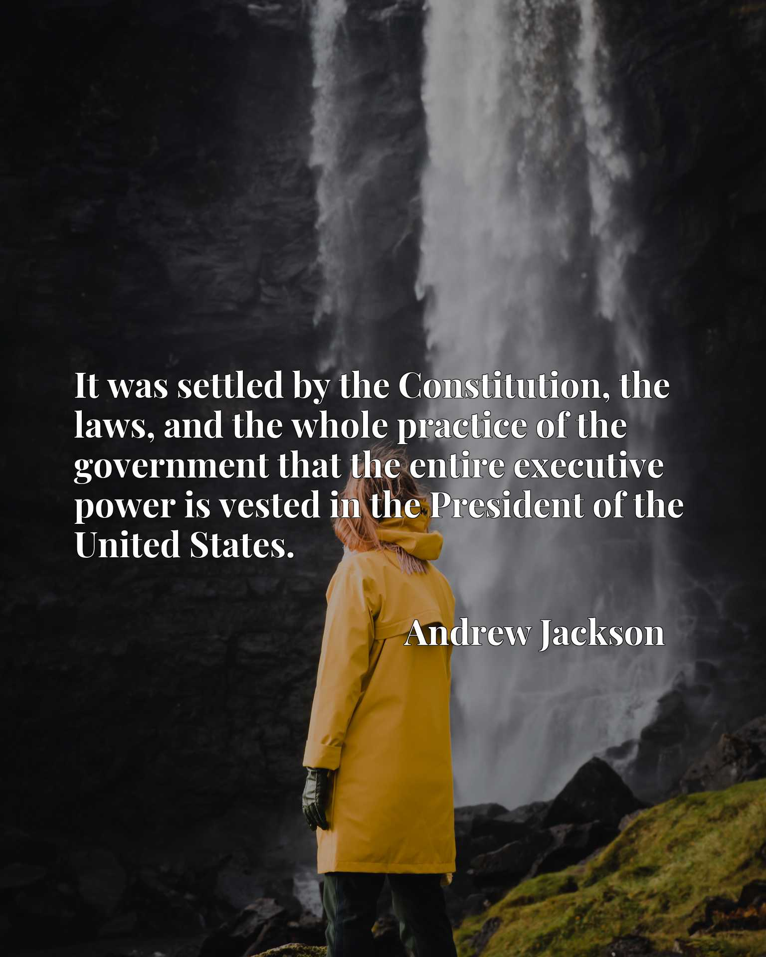 It was settled by the Constitution, the laws, and the whole practice of the government that the entire executive power is vested in the President of the United States.