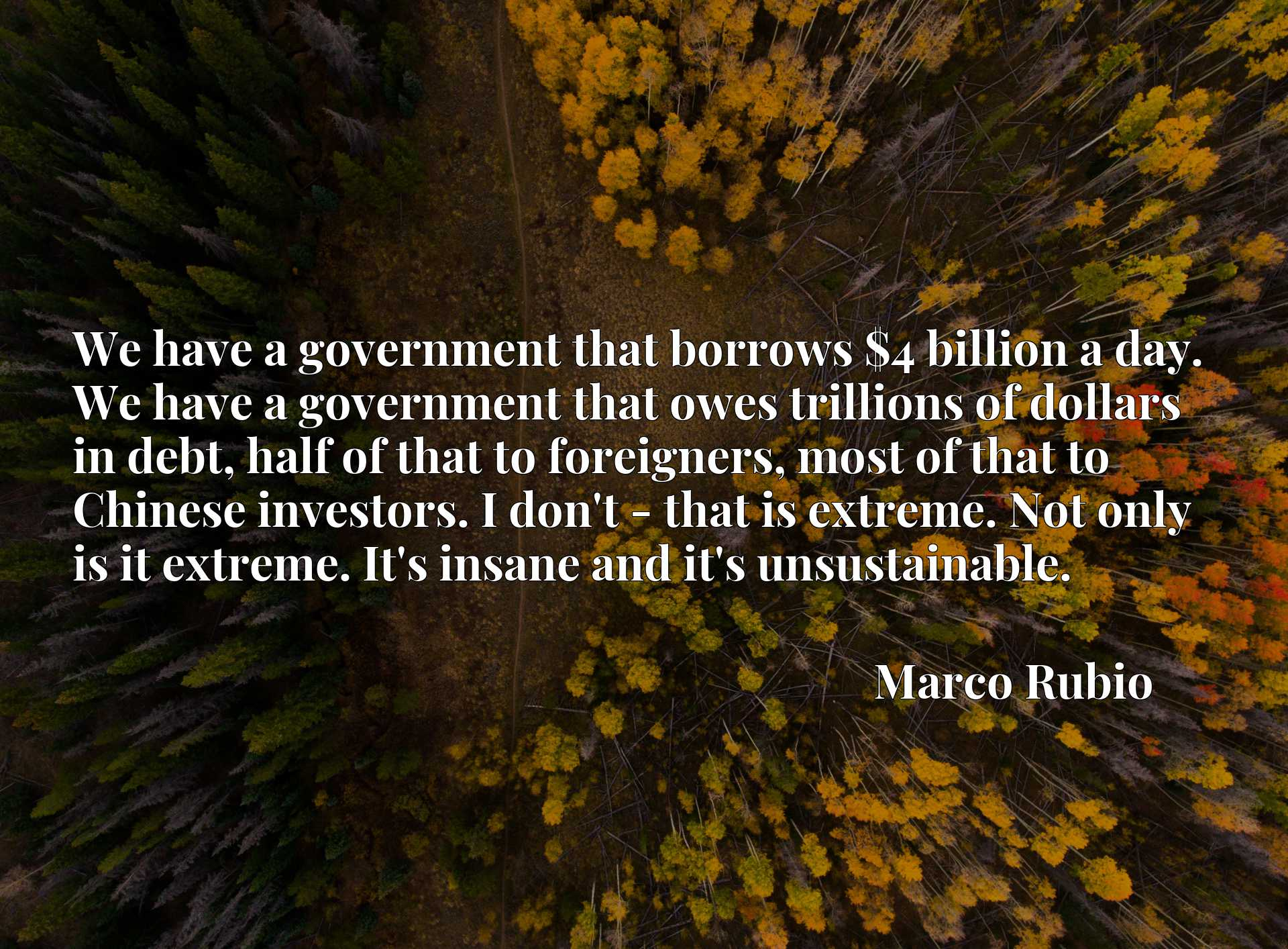 We have a government that borrows $4 billion a day. We have a government that owes trillions of dollars in debt, half of that to foreigners, most of that to Chinese investors. I don't - that is extreme. Not only is it extreme. It's insane and it's unsustainable.