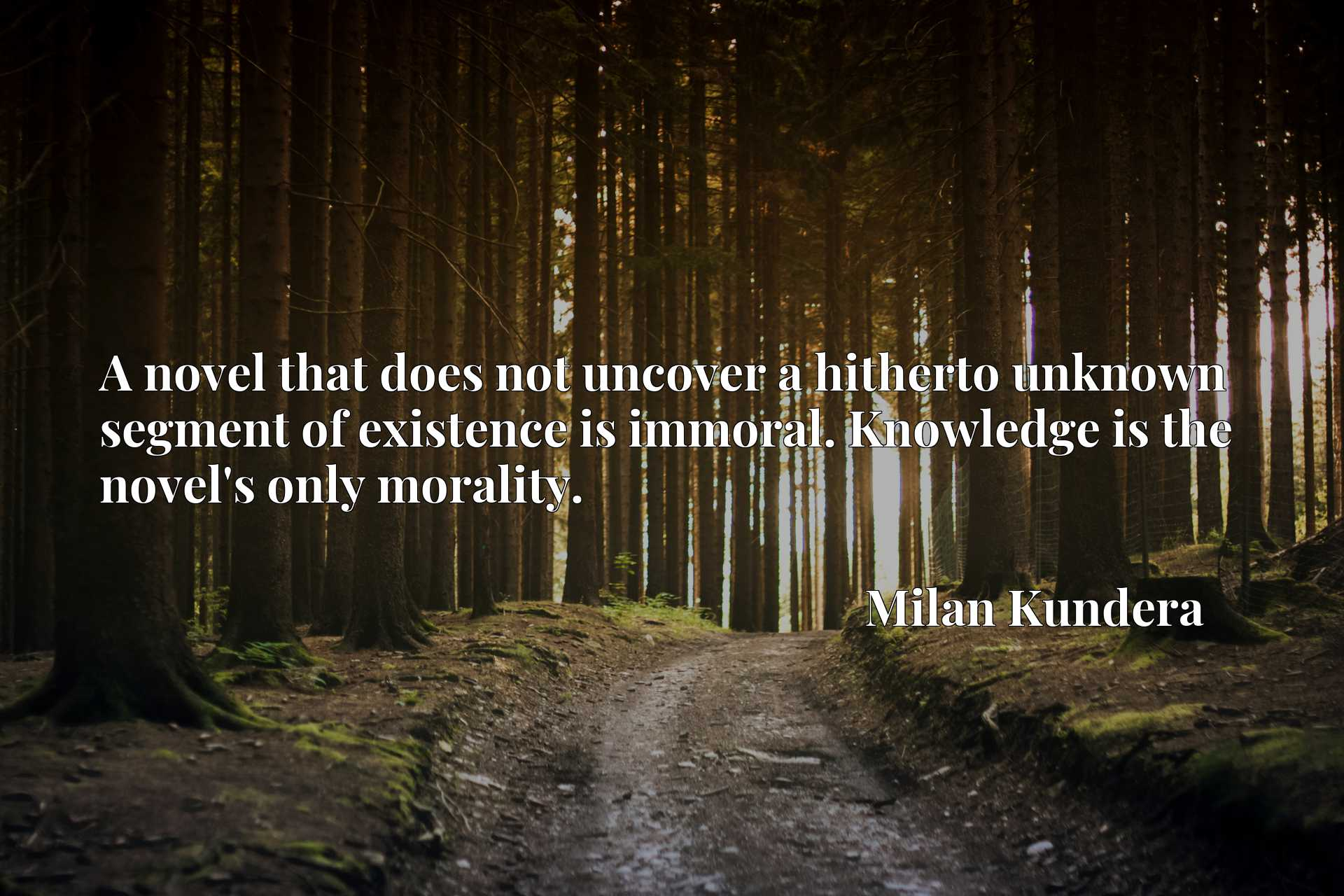 A novel that does not uncover a hitherto unknown segment of existence is immoral. Knowledge is the novel's only morality.