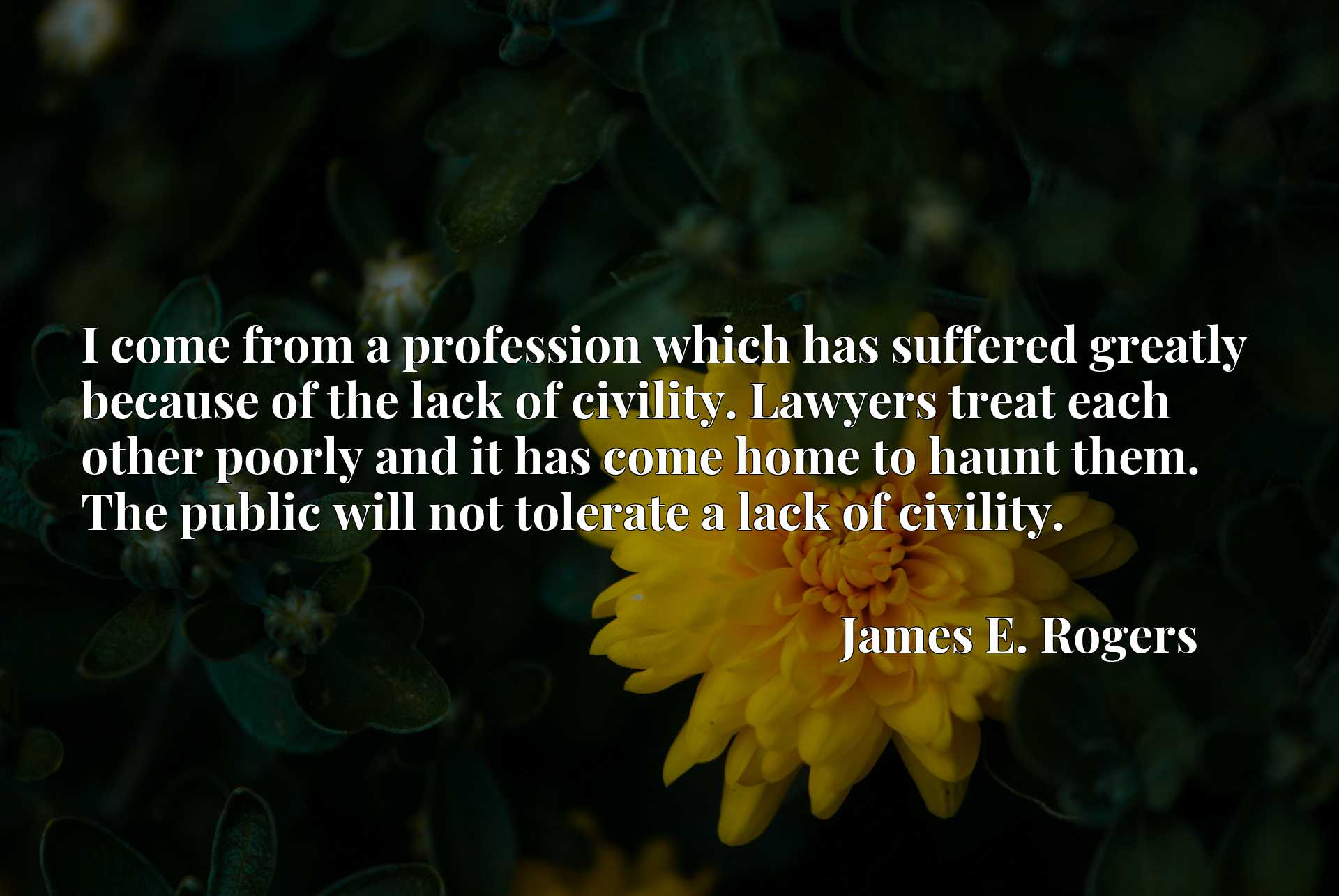 I come from a profession which has suffered greatly because of the lack of civility. Lawyers treat each other poorly and it has come home to haunt them. The public will not tolerate a lack of civility.