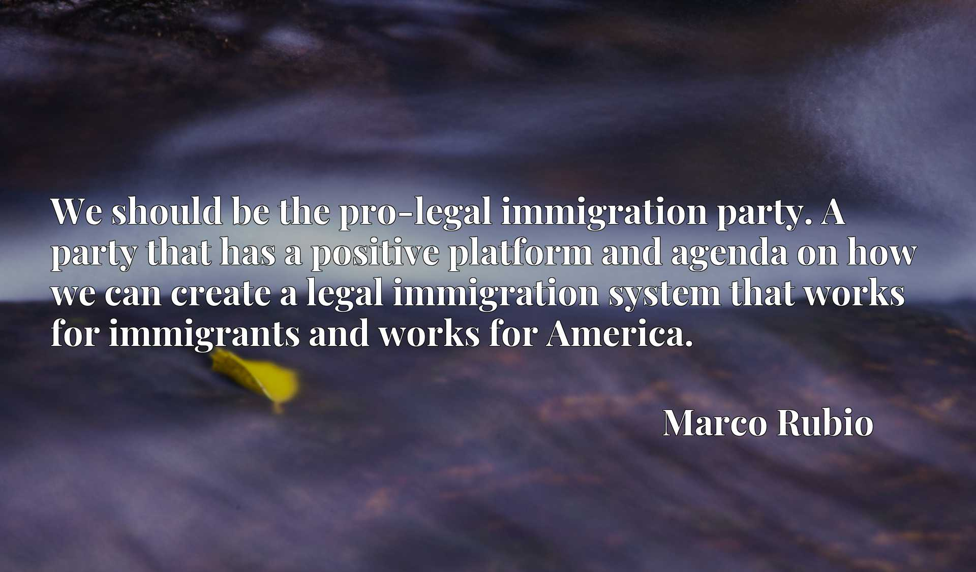 We should be the pro-legal immigration party. A party that has a positive platform and agenda on how we can create a legal immigration system that works for immigrants and works for America.