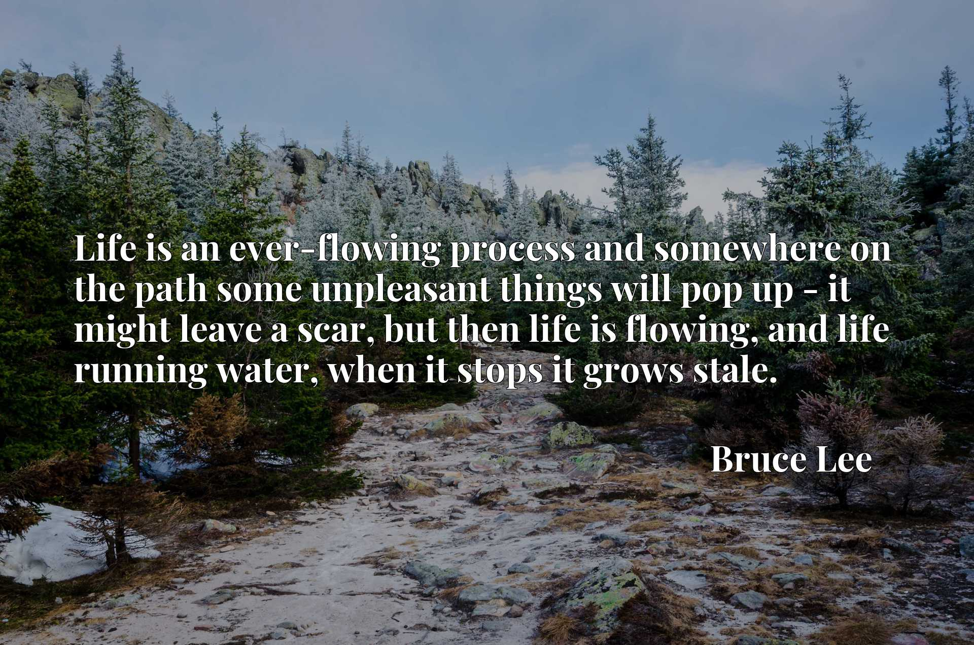 Life is an ever-flowing process and somewhere on the path some unpleasant things will pop up - it might leave a scar, but then life is flowing, and life running water, when it stops it grows stale.