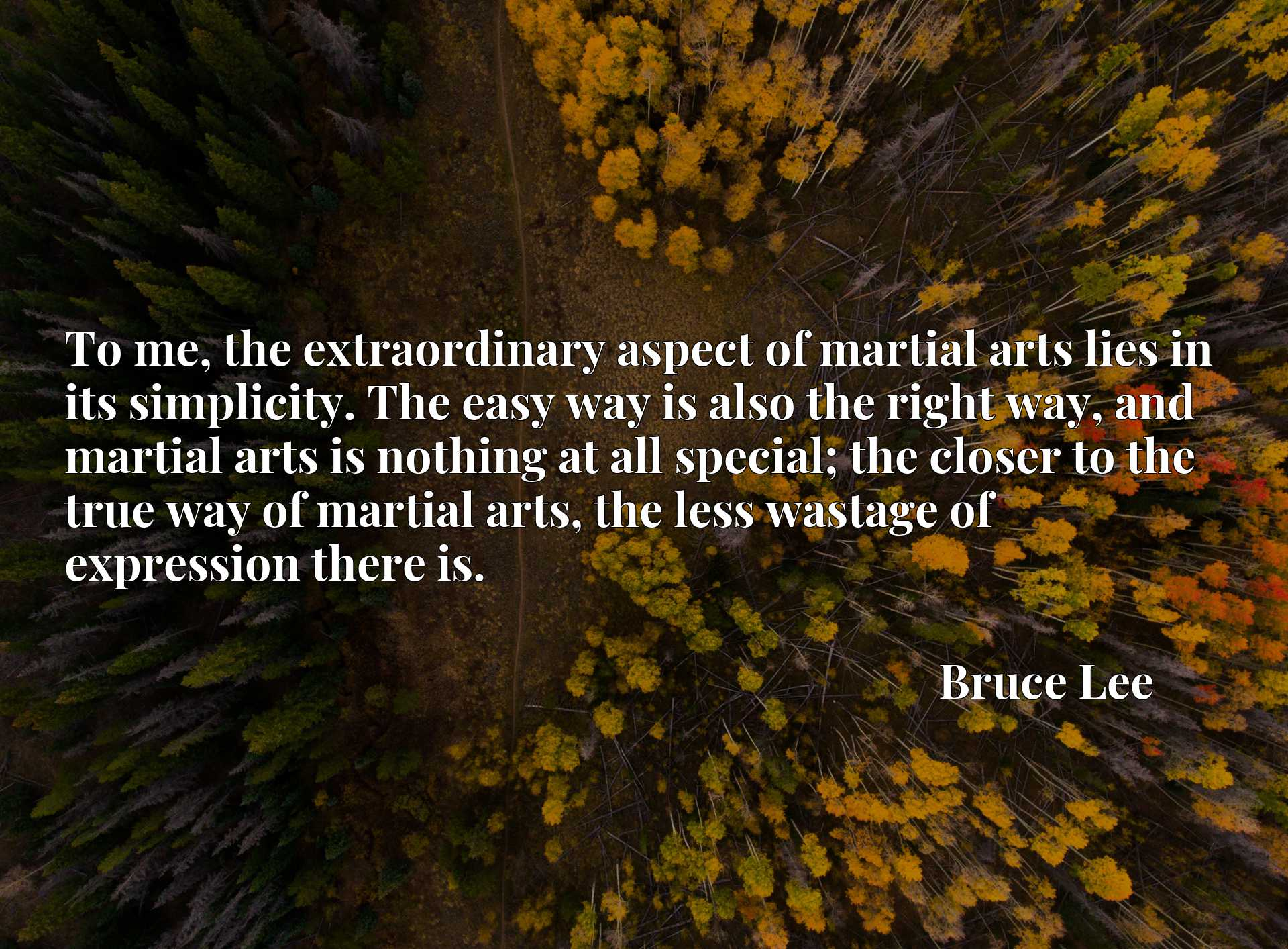 To me, the extraordinary aspect of martial arts lies in its simplicity. The easy way is also the right way, and martial arts is nothing at all special; the closer to the true way of martial arts, the less wastage of expression there is.