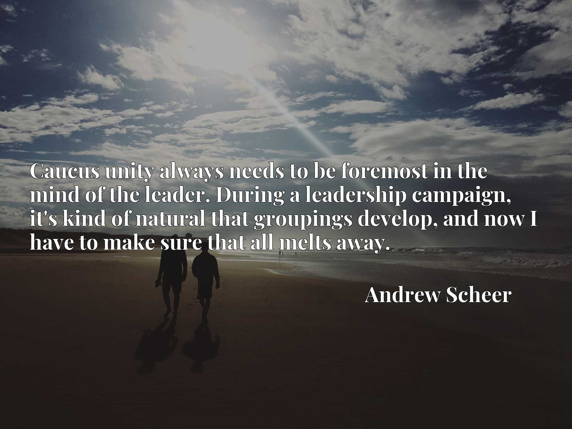 Quote Picture :Caucus unity always needs to be foremost in the mind of the leader. During a leadership campaign, it's kind of natural that groupings develop, and now I have to make sure that all melts away.