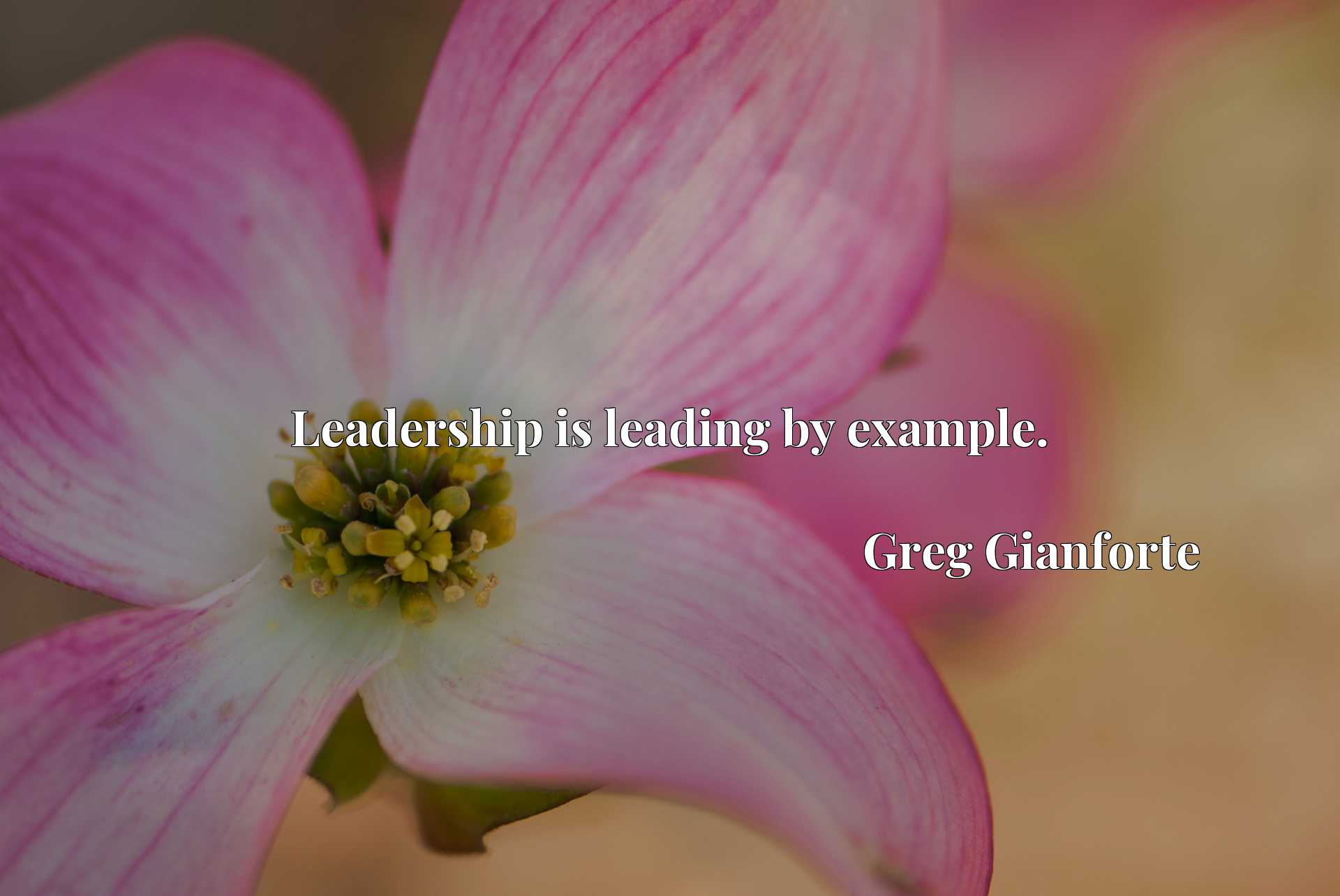 Quote Picture :Leadership is leading by example.