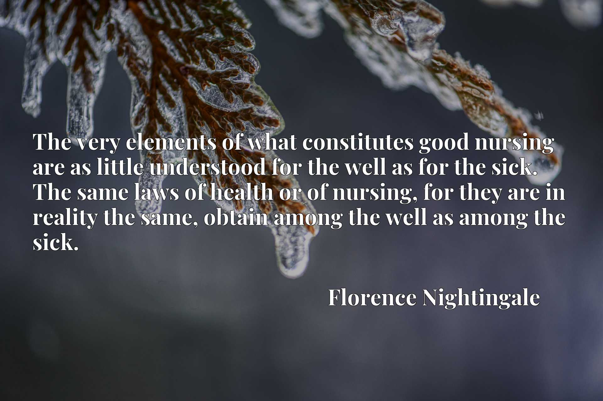 The very elements of what constitutes good nursing are as little understood for the well as for the sick. The same laws of health or of nursing, for they are in reality the same, obtain among the well as among the sick.