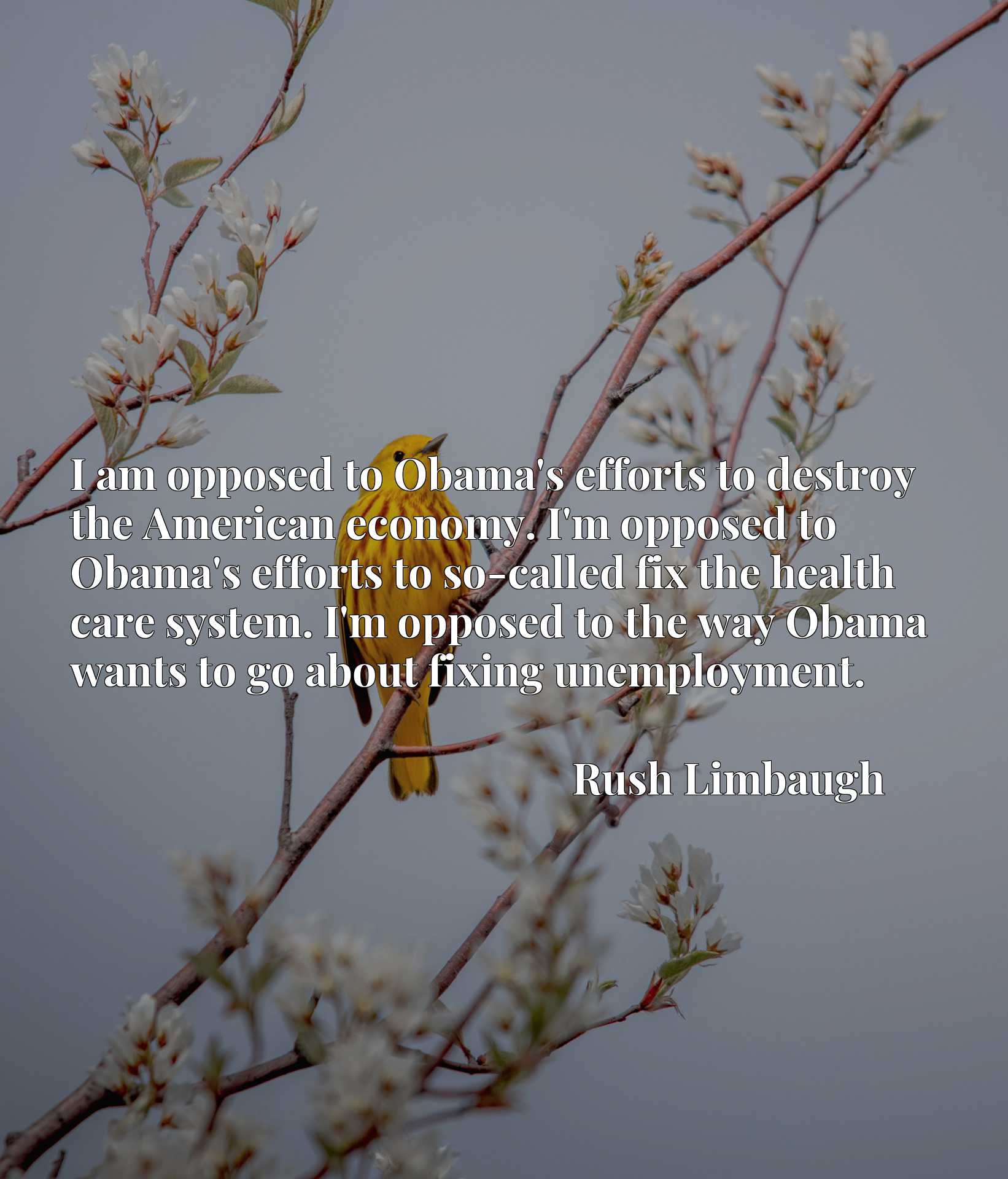 I am opposed to Obama's efforts to destroy the American economy. I'm opposed to Obama's efforts to so-called fix the health care system. I'm opposed to the way Obama wants to go about fixing unemployment.