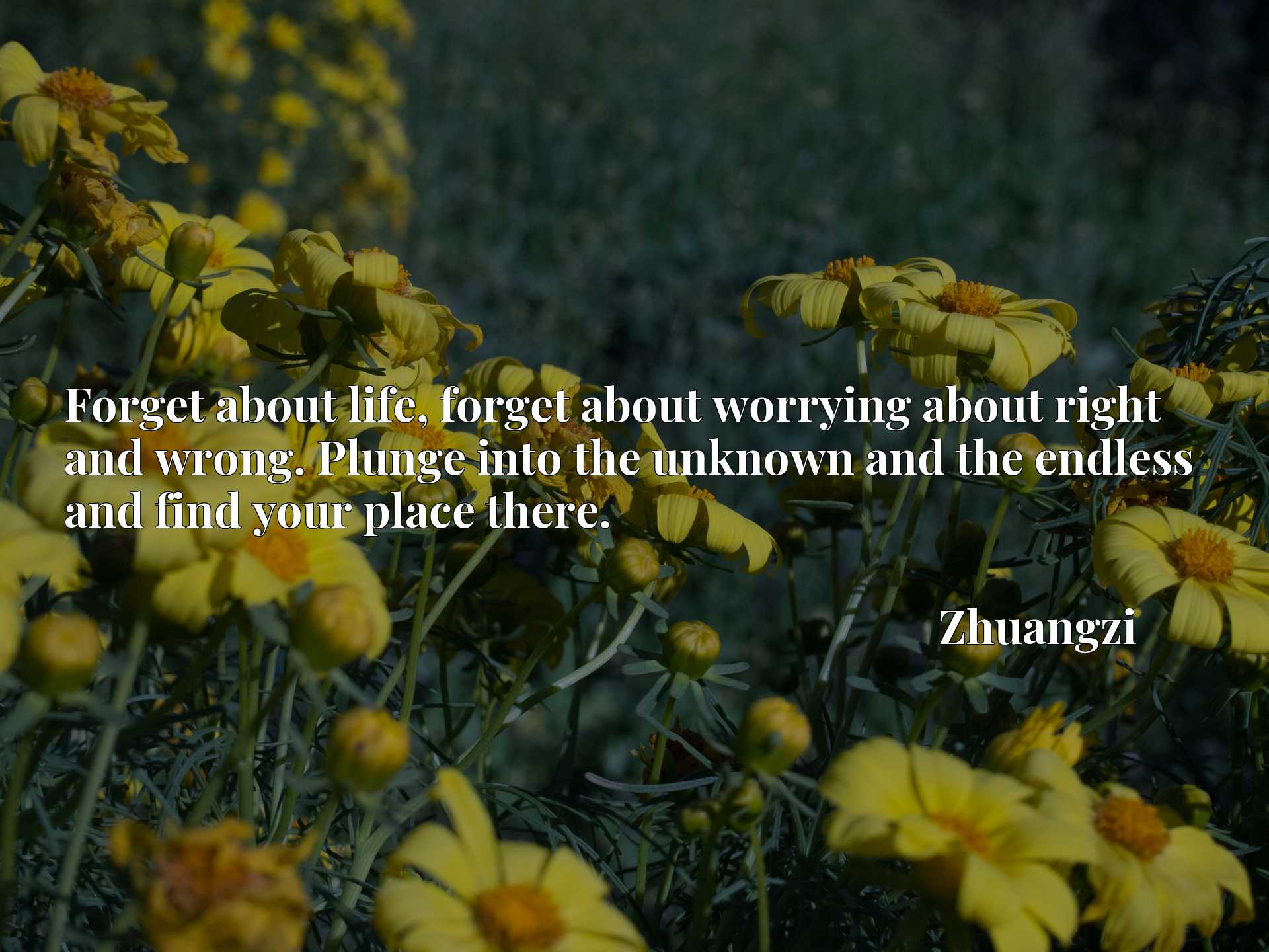 Quote Picture :Forget about life, forget about worrying about right and wrong. Plunge into the unknown and the endless and find your place there.