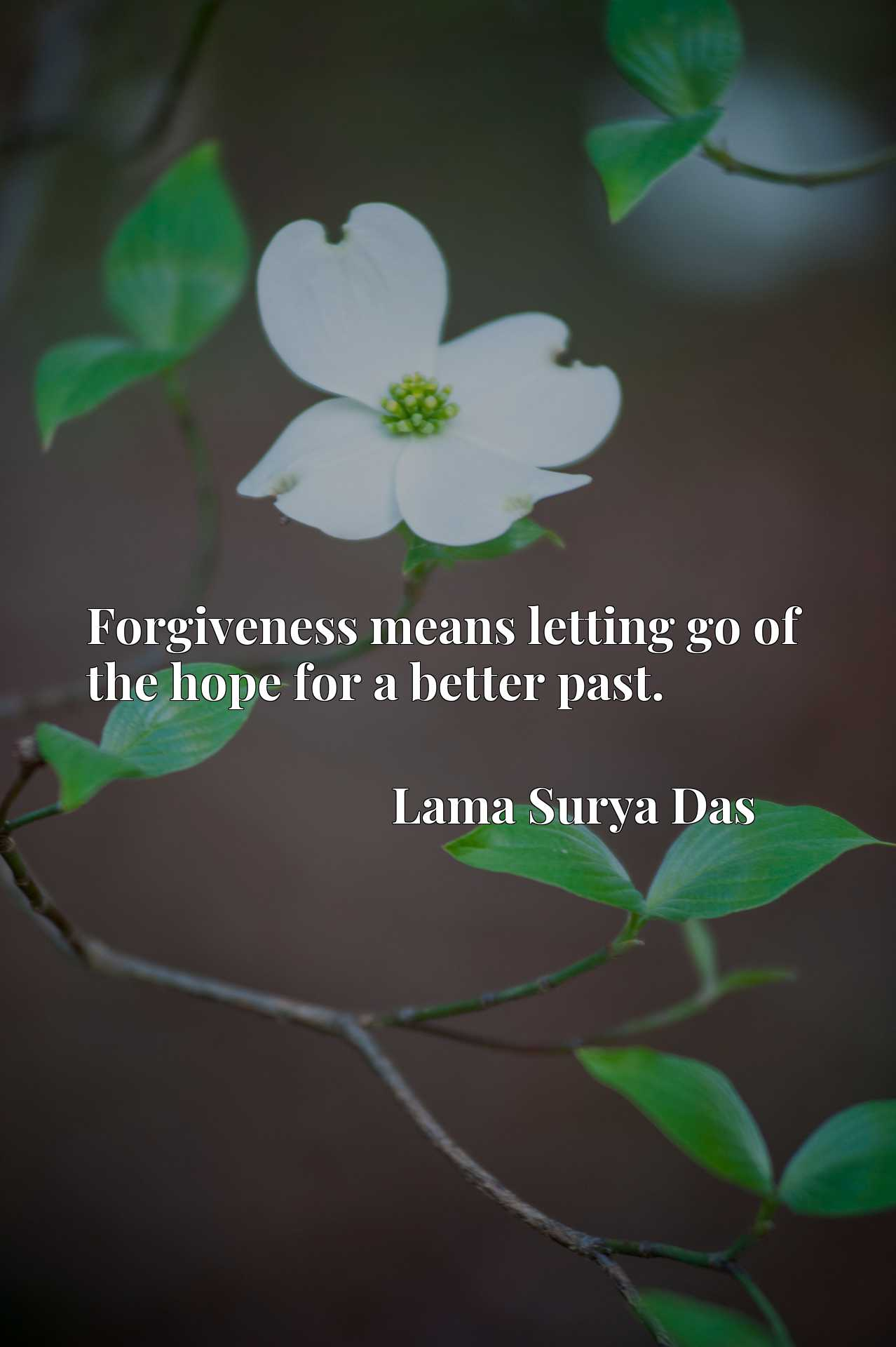 Quote Picture :Forgiveness means letting go of the hope for a better past.