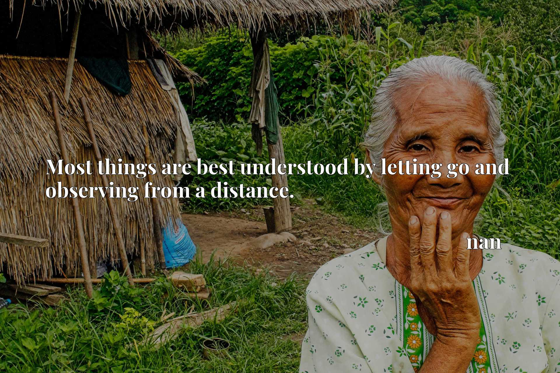 Quote Picture :Most things are best understood by letting go and observing from a distance.