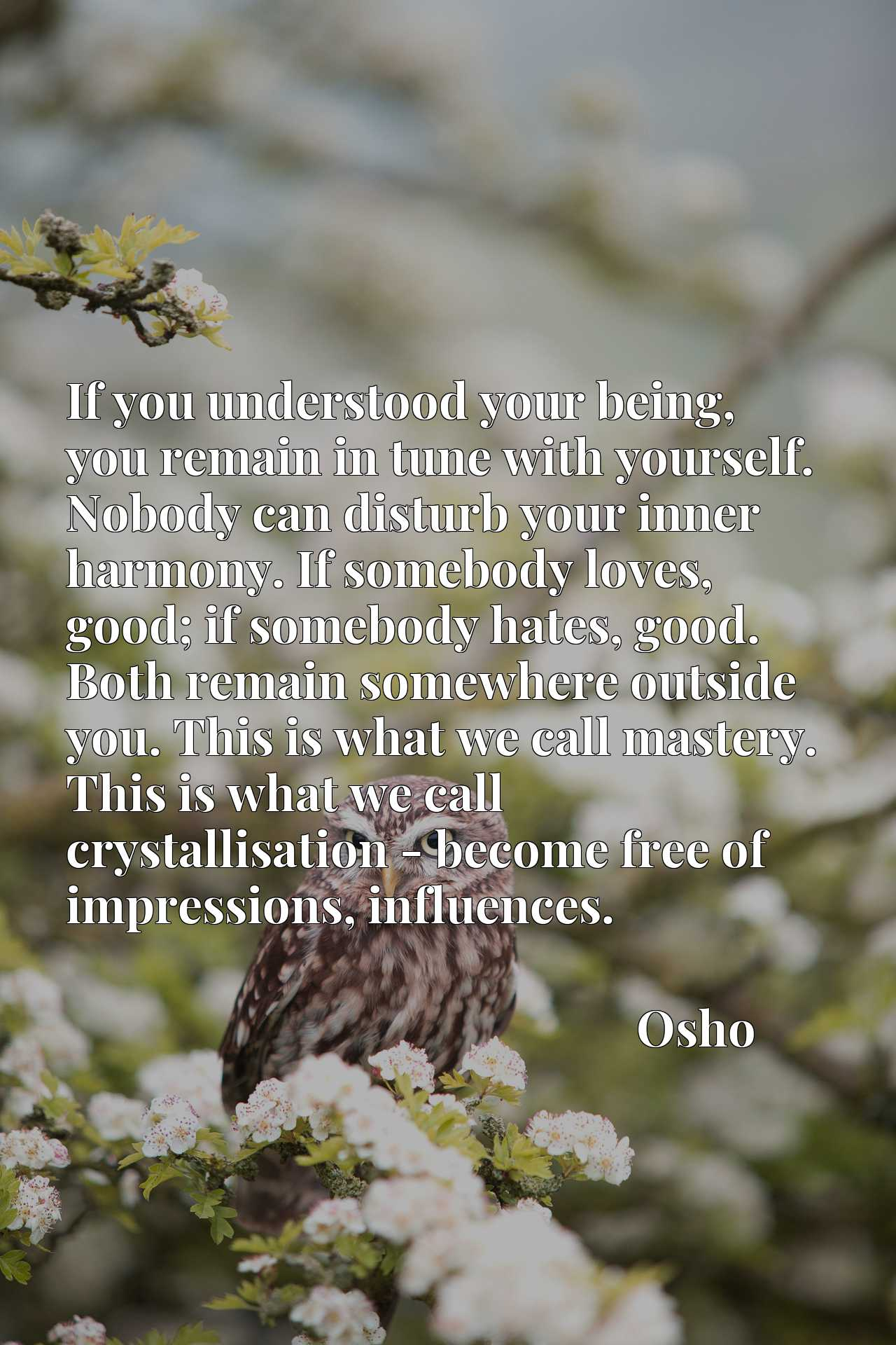 Quote Picture :If you understood your being, you remain in tune with yourself. Nobody can disturb your inner harmony. If somebody loves, good; if somebody hates, good. Both remain somewhere outside you. This is what we call mastery. This is what we call crystallisation - become free of impressions, influences.
