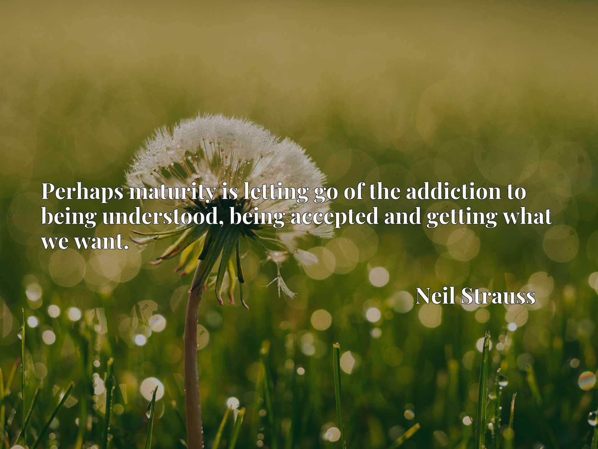 Quote Picture :Perhaps maturity is letting go of the addiction to being understood, being accepted and getting what we want.