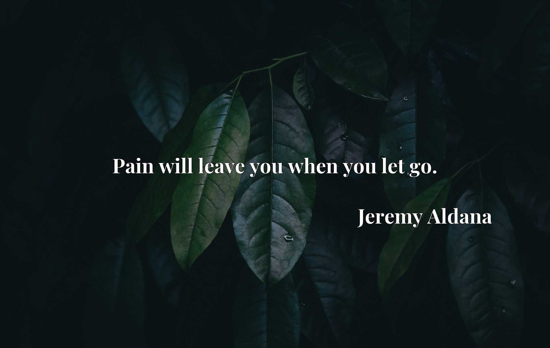 Quote Picture :Pain will leave you when you let go.