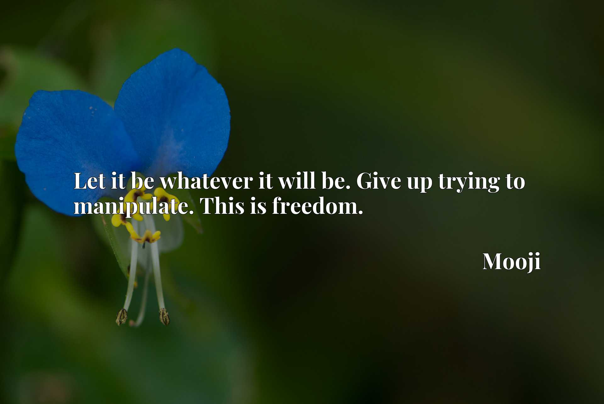 Quote Picture :Let it be whatever it will be. Give up trying to manipulate. This is freedom.