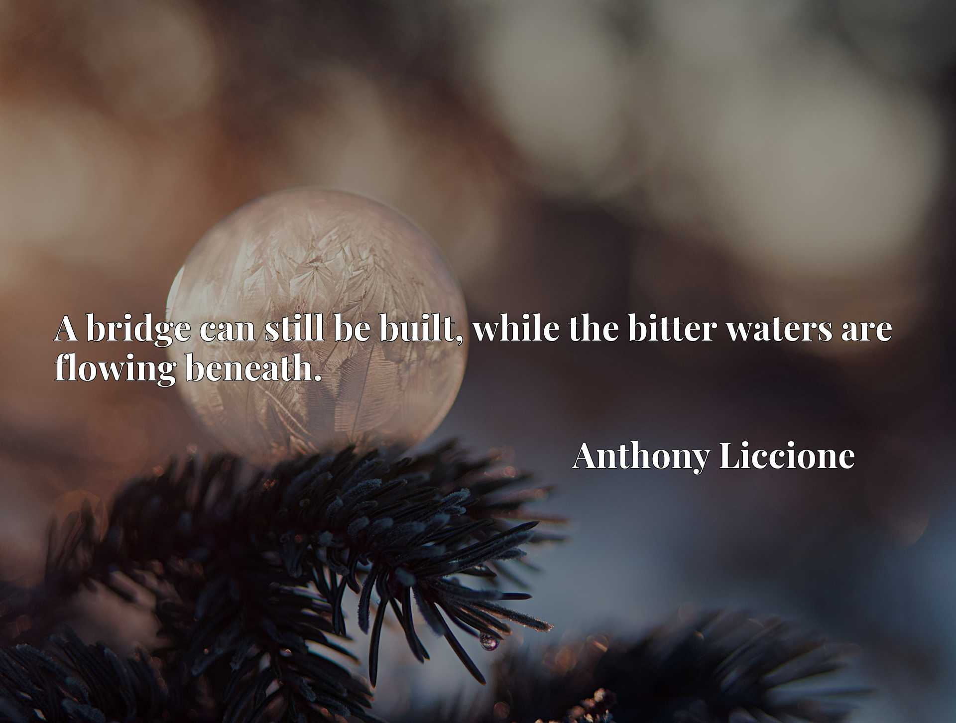 Quote Picture :A bridge can still be built, while the bitter waters are flowing beneath.