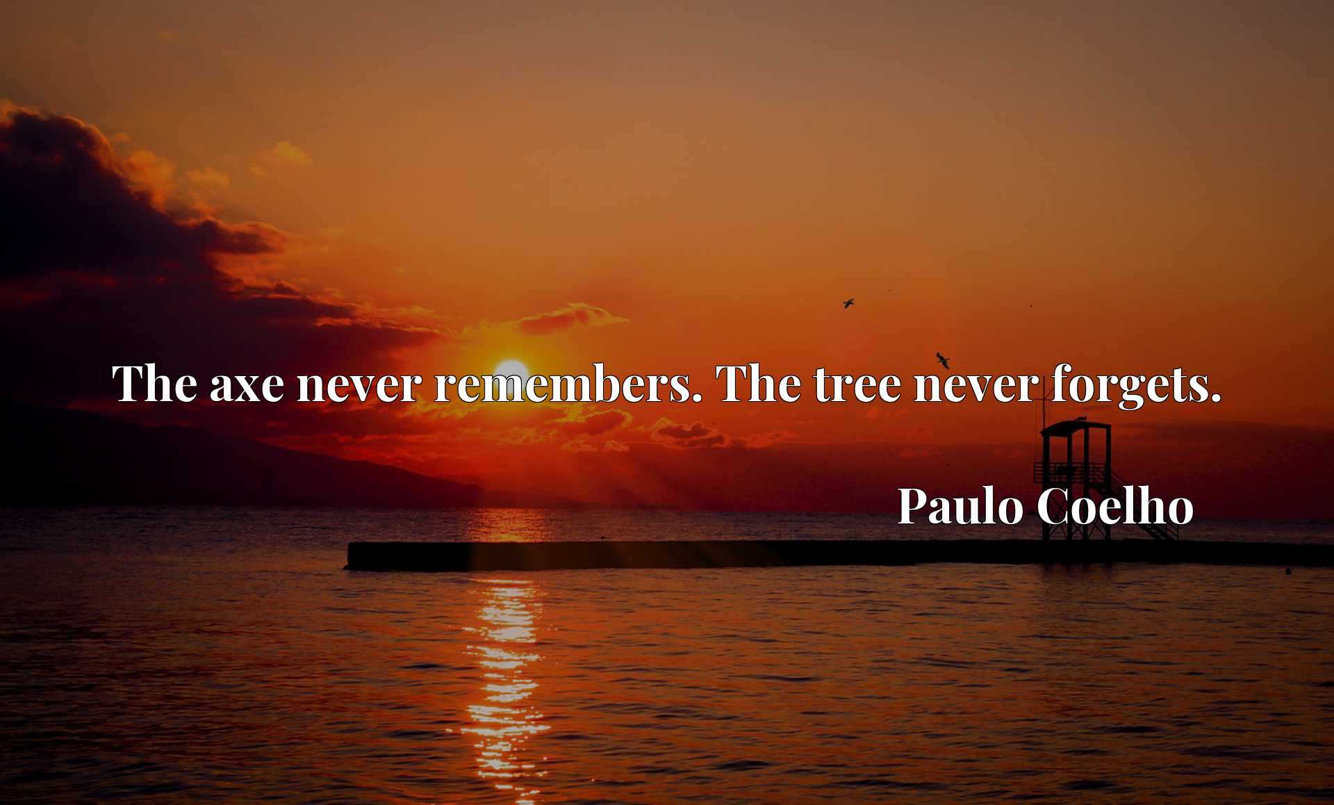 The axe never remembers. The tree never forgets.