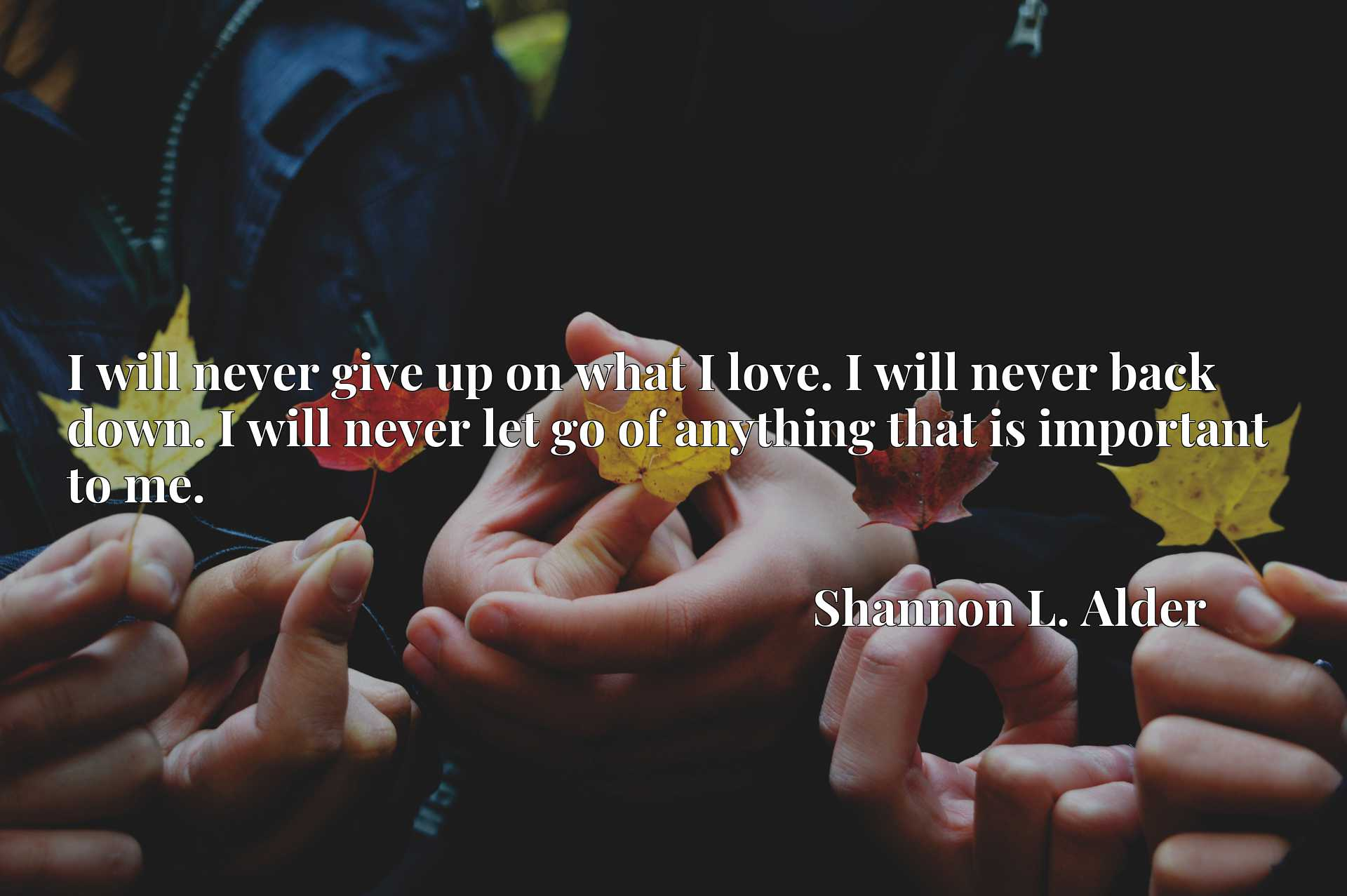 Quote Picture :I will never give up on what I love. I will never back down. I will never let go of anything that is important to me.