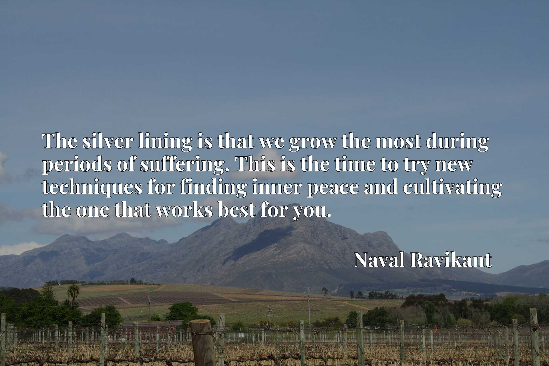 Quote Picture :The silver lining is that we grow the most during periods of suffering. This is the time to try new techniques for finding inner peace and cultivating the one that works best for you.