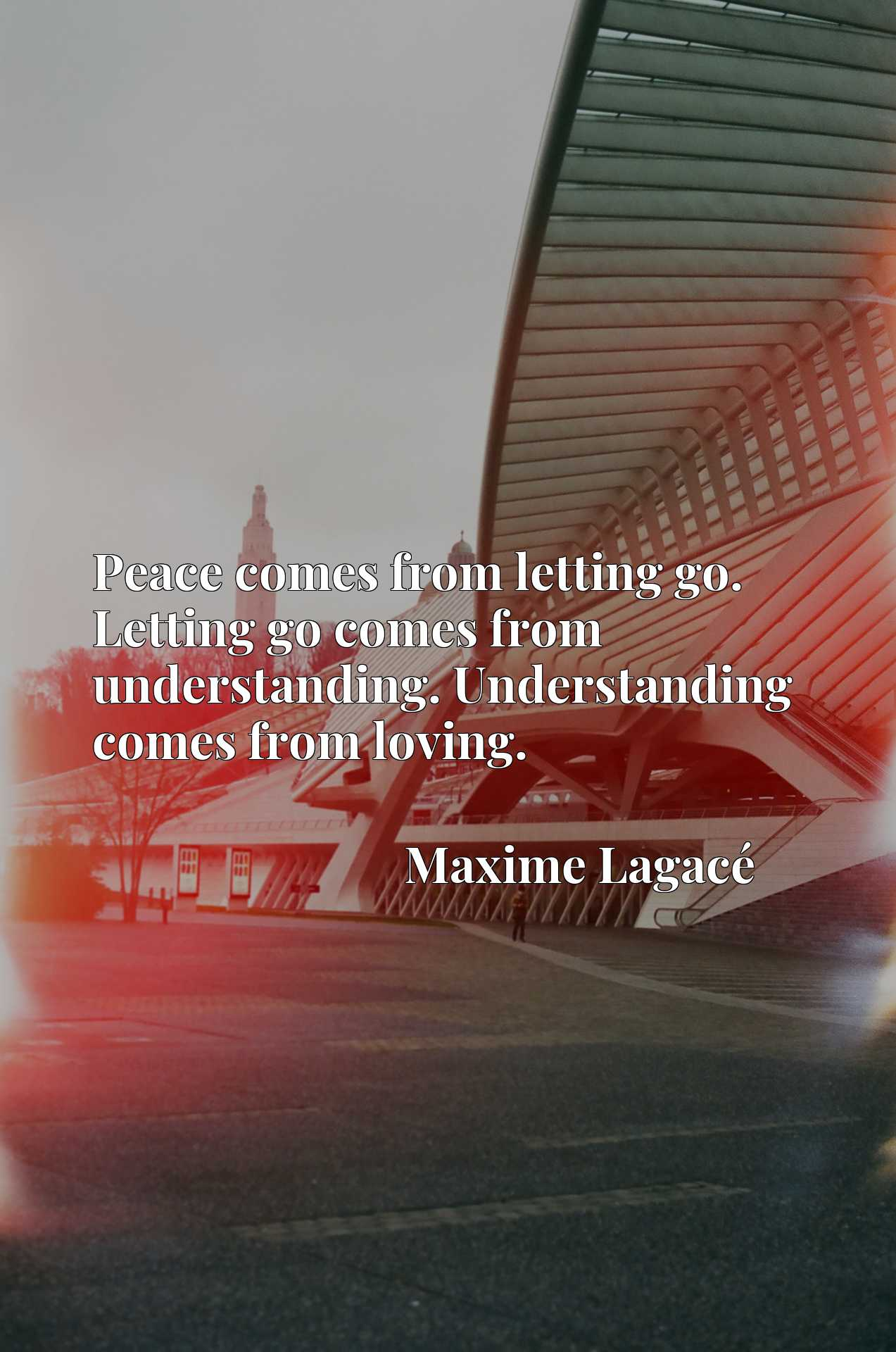 Peace comes from letting go. Letting go comes from understanding. Understanding comes from loving.