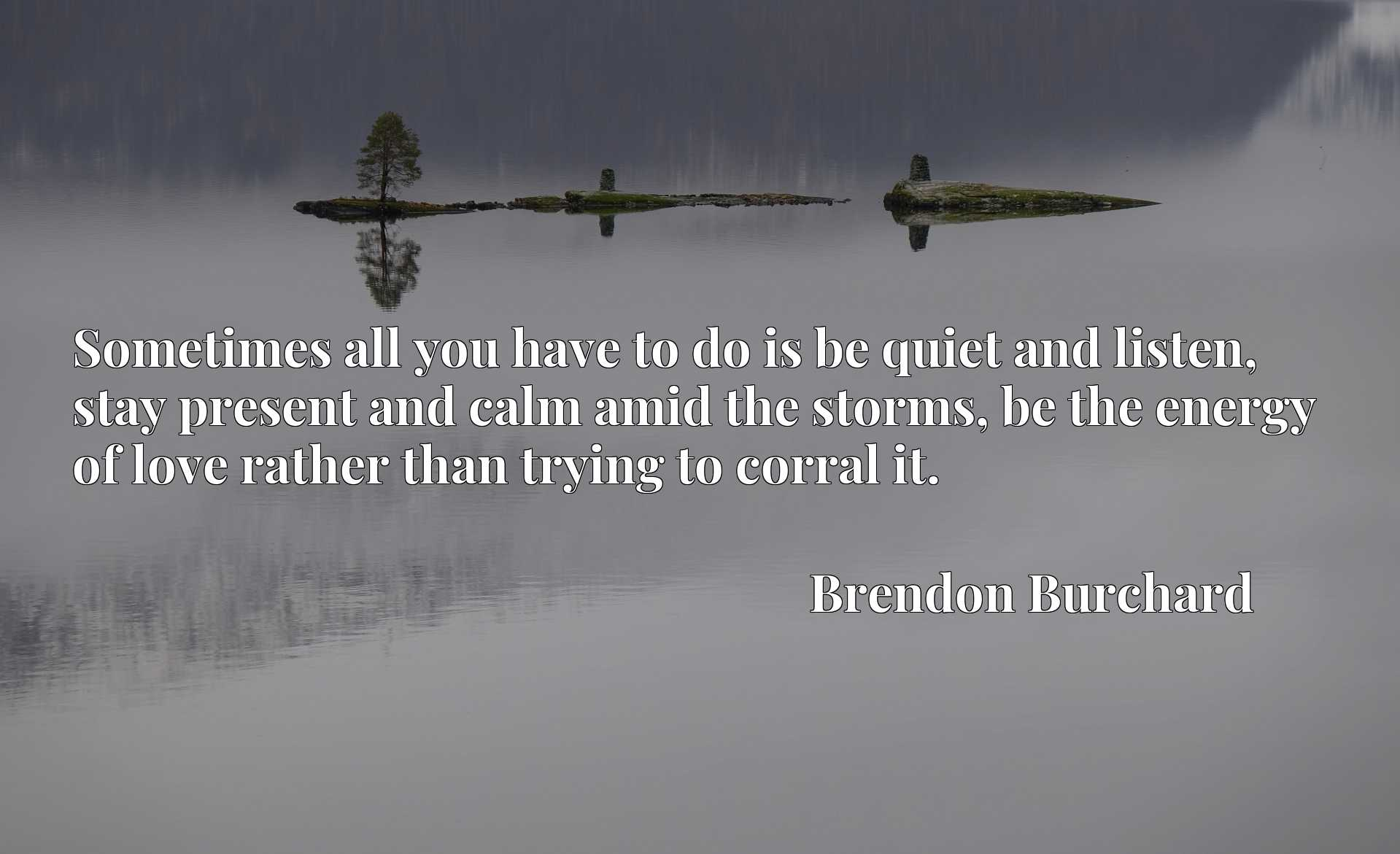 Quote Picture :Sometimes all you have to do is be quiet and listen, stay present and calm amid the storms, be the energy of love rather than trying to corral it.