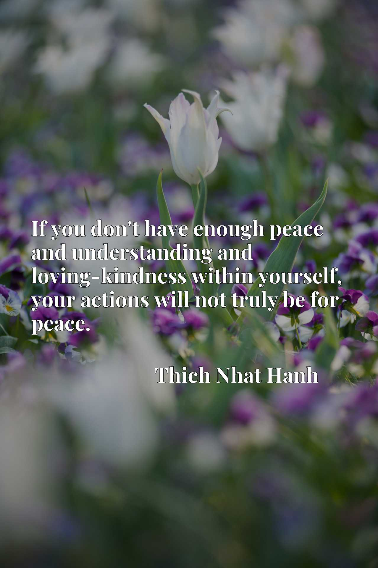 Quote Picture :If you don't have enough peace and understanding and loving-kindness within yourself, your actions will not truly be for peace.