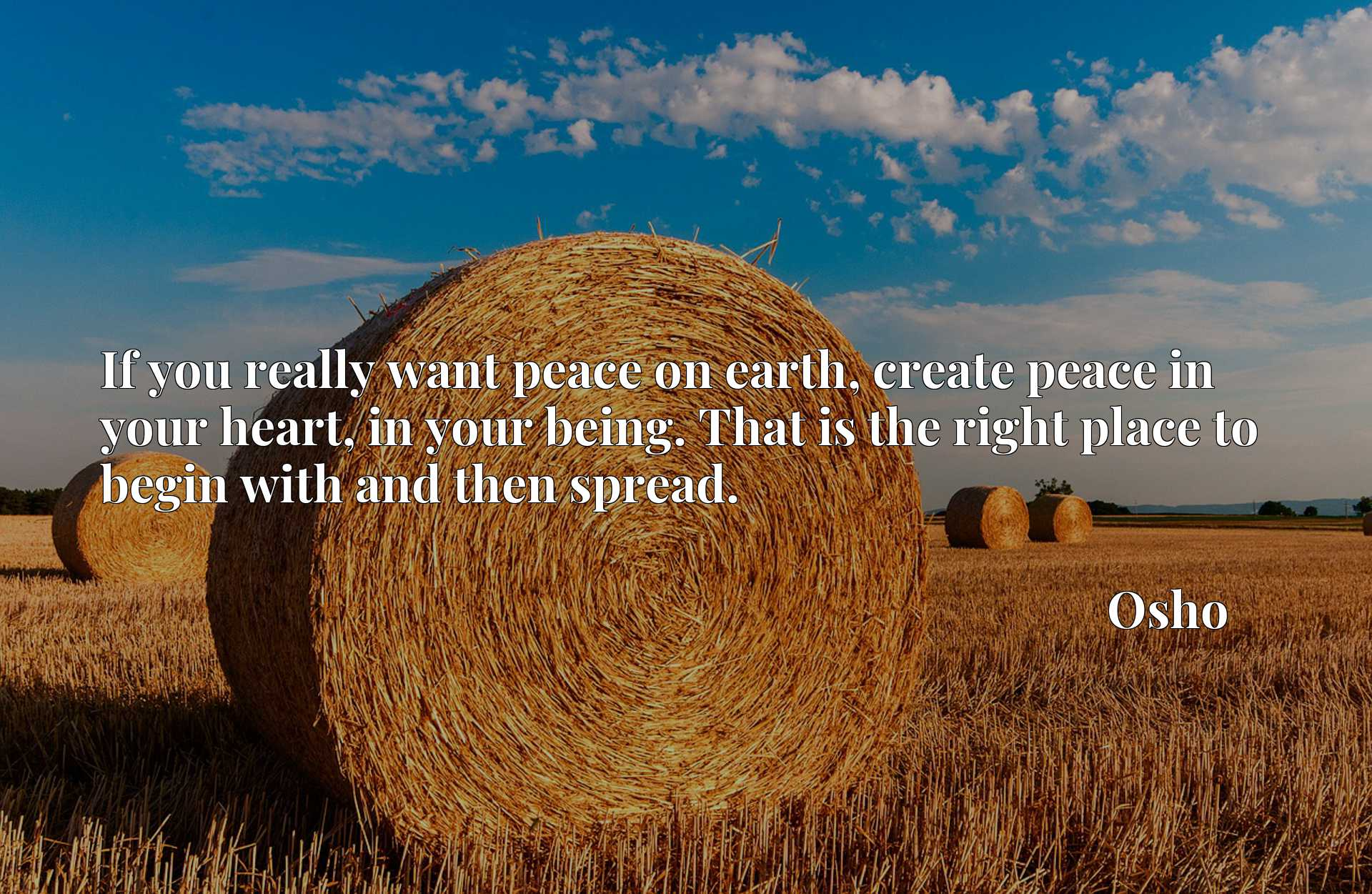 Quote Picture :If you really want peace on earth, create peace in your heart, in your being. That is the right place to begin with and then spread.