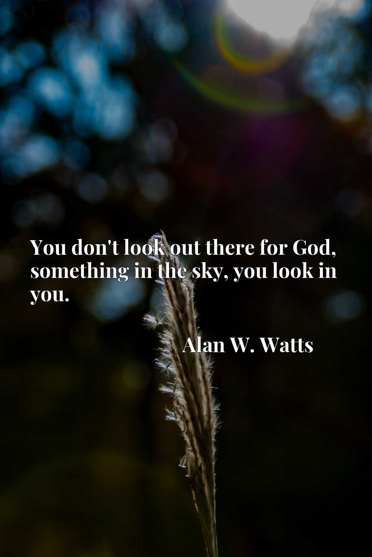 Quote Picture :You don't look out there for God, something in the sky, you look in you.