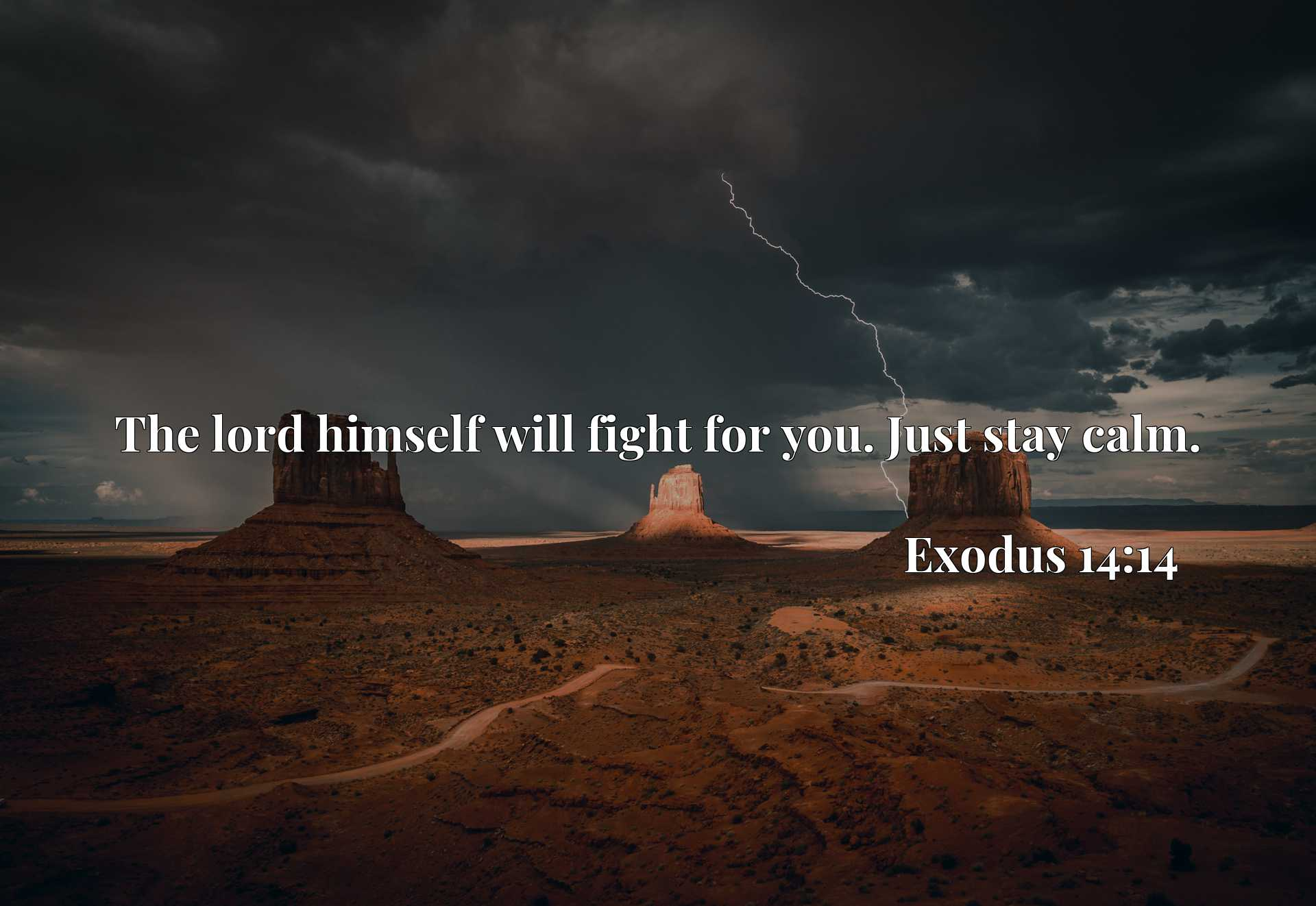 Quote Picture :The lord himself will fight for you. Just stay calm.