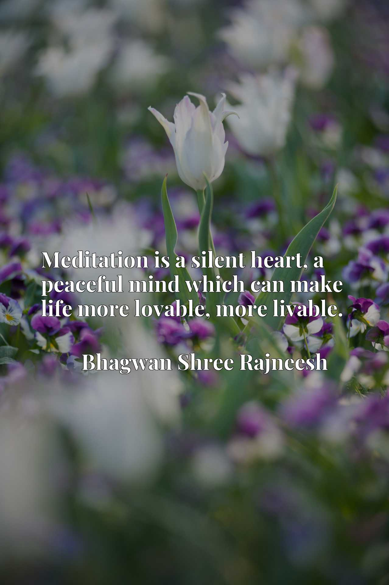 Quote Picture :Meditation is a silent heart, a peaceful mind which can make life more lovable, more livable.