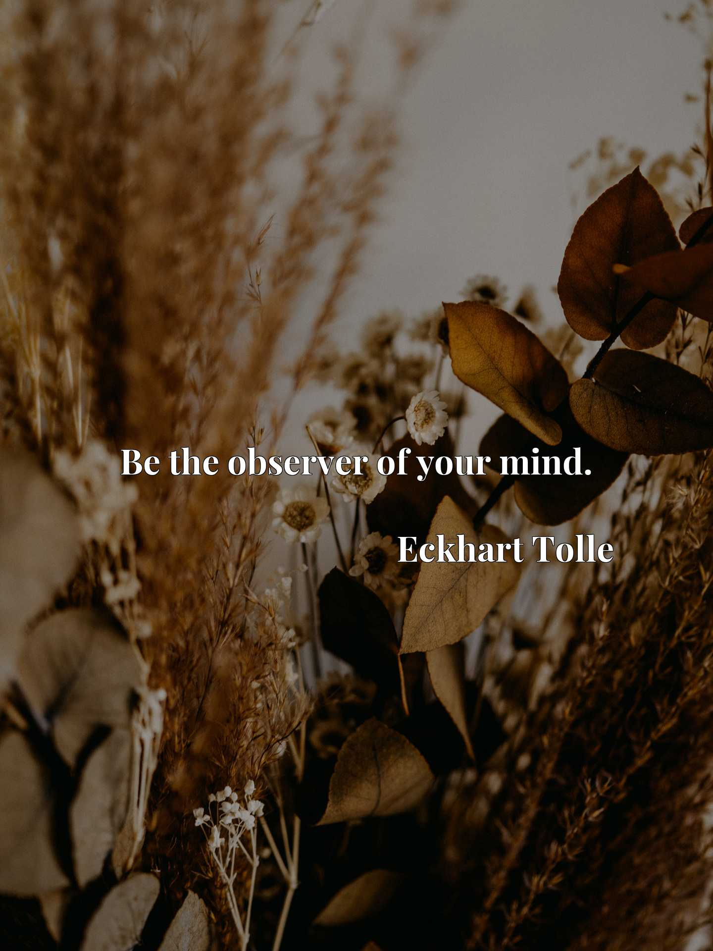 Quote Picture :Be the observer of your mind.
