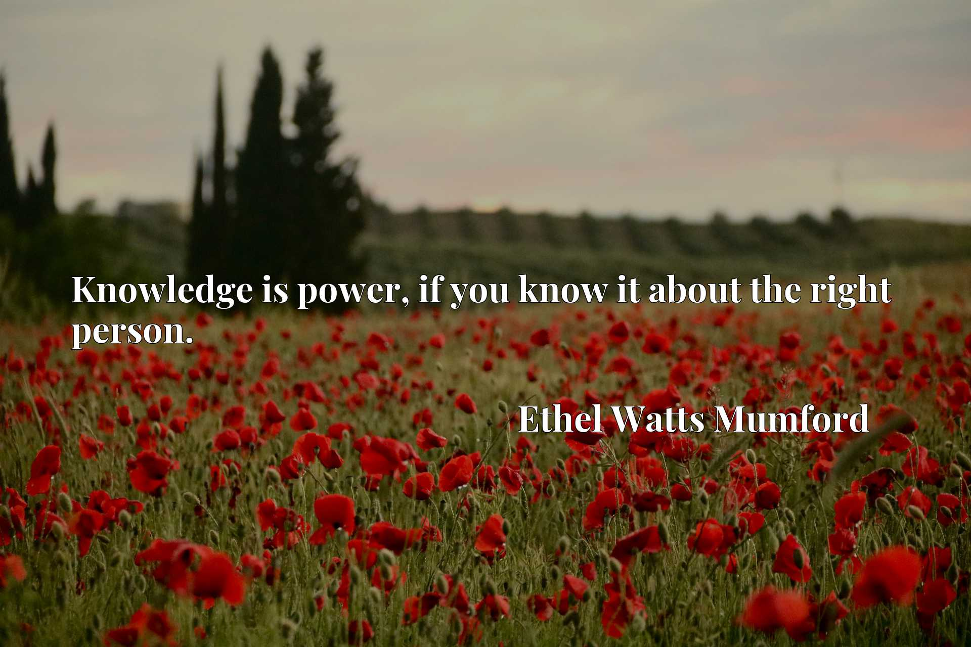 Quote Picture :Knowledge is power, if you know it about the right person.