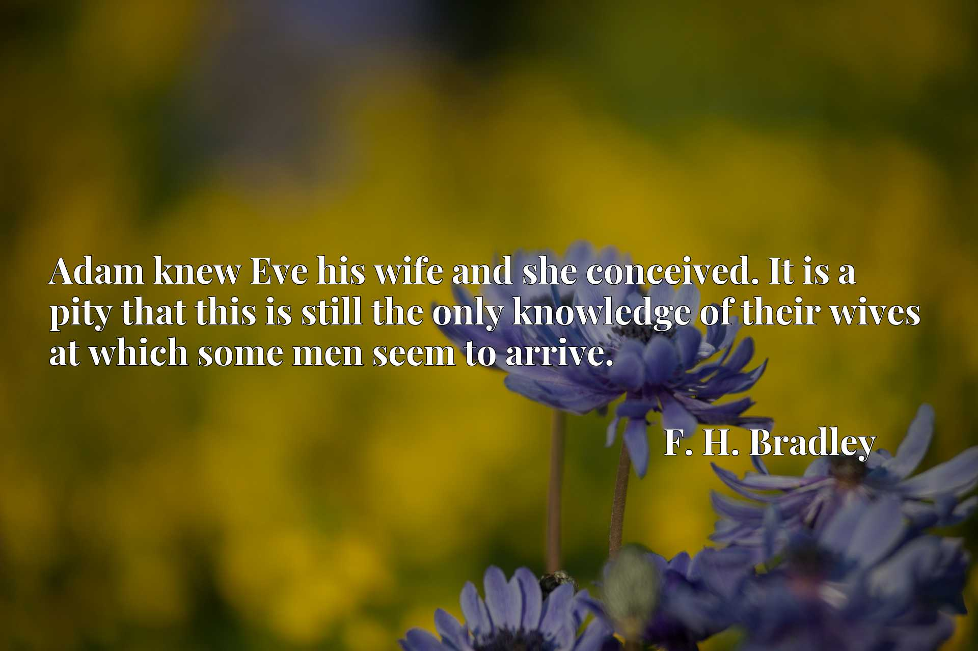 Quote Picture :Adam knew Eve his wife and she conceived. It is a pity that this is still the only knowledge of their wives at which some men seem to arrive.