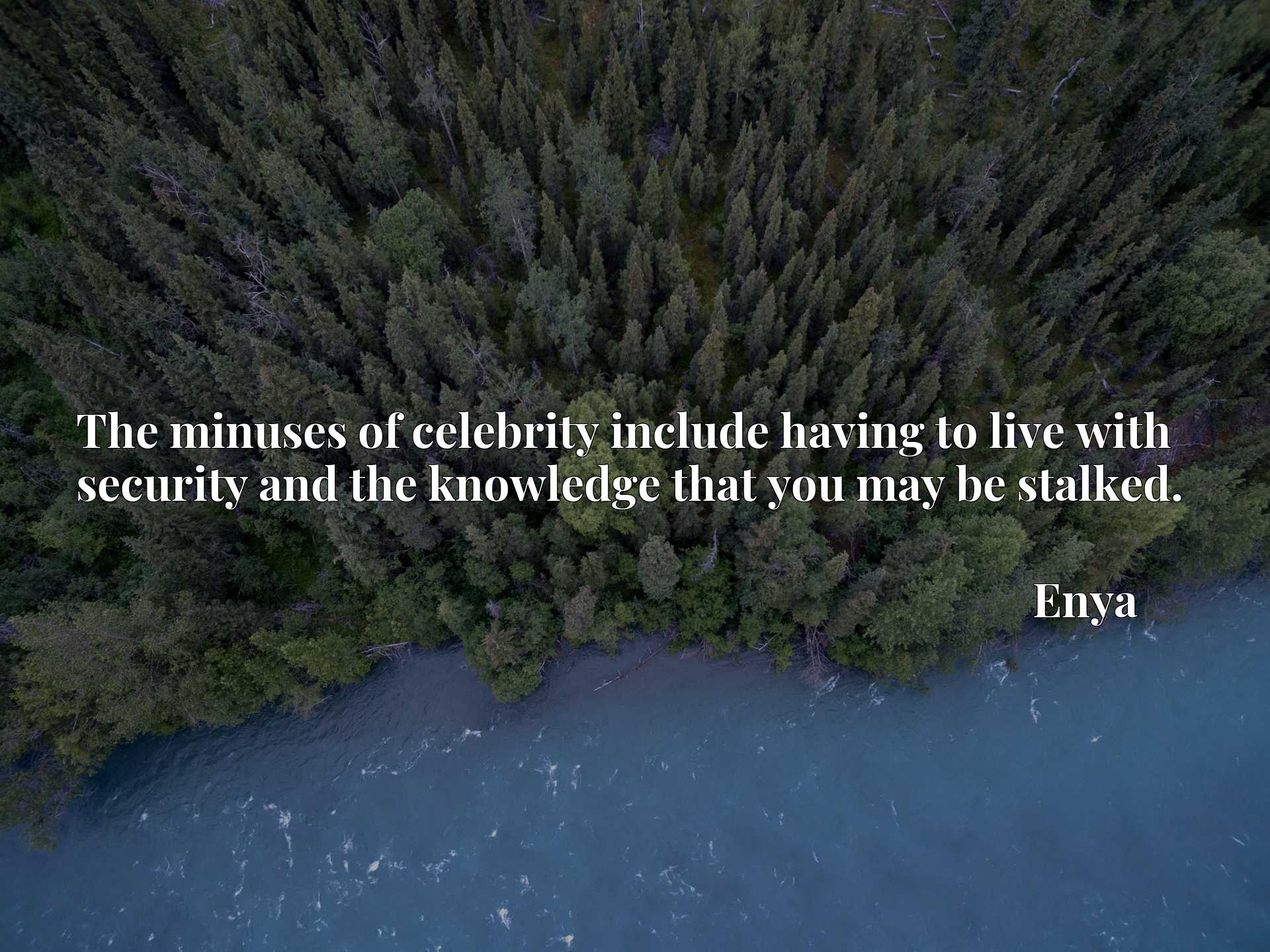 Quote Picture :The minuses of celebrity include having to live with security and the knowledge that you may be stalked.