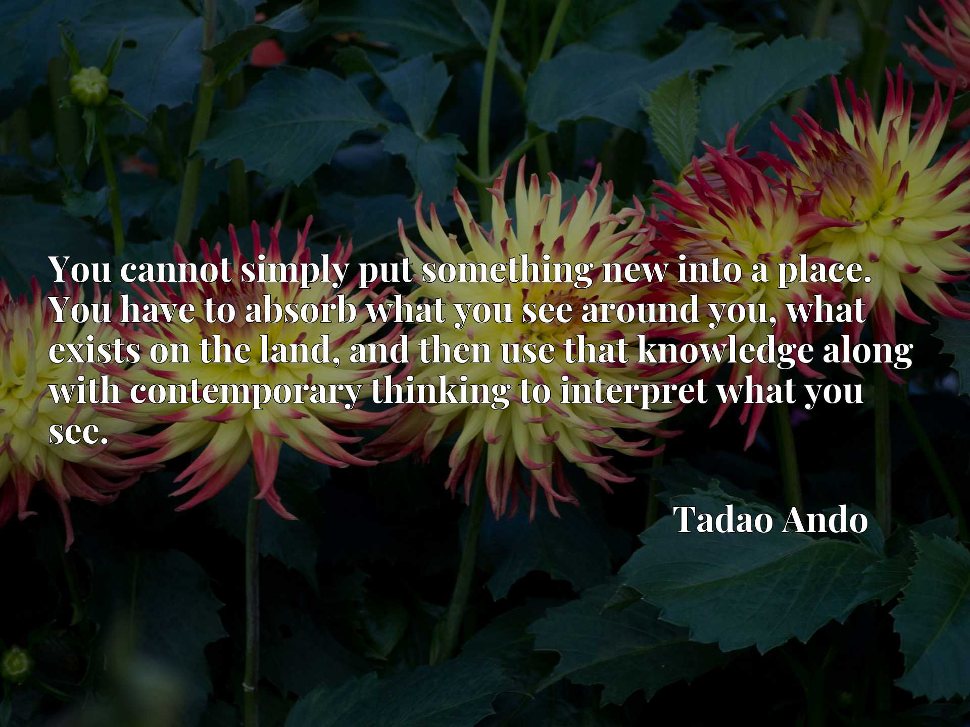 Quote Picture :You cannot simply put something new into a place. You have to absorb what you see around you, what exists on the land, and then use that knowledge along with contemporary thinking to interpret what you see.
