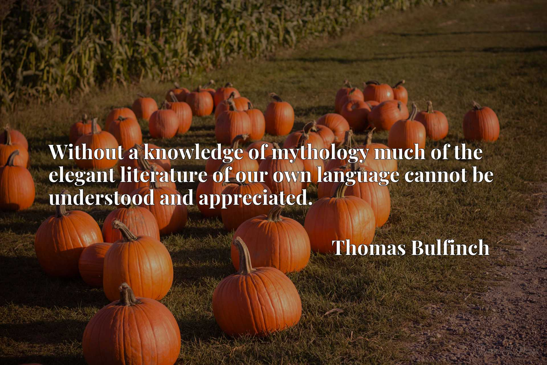 Quote Picture :Without a knowledge of mythology much of the elegant literature of our own language cannot be understood and appreciated.