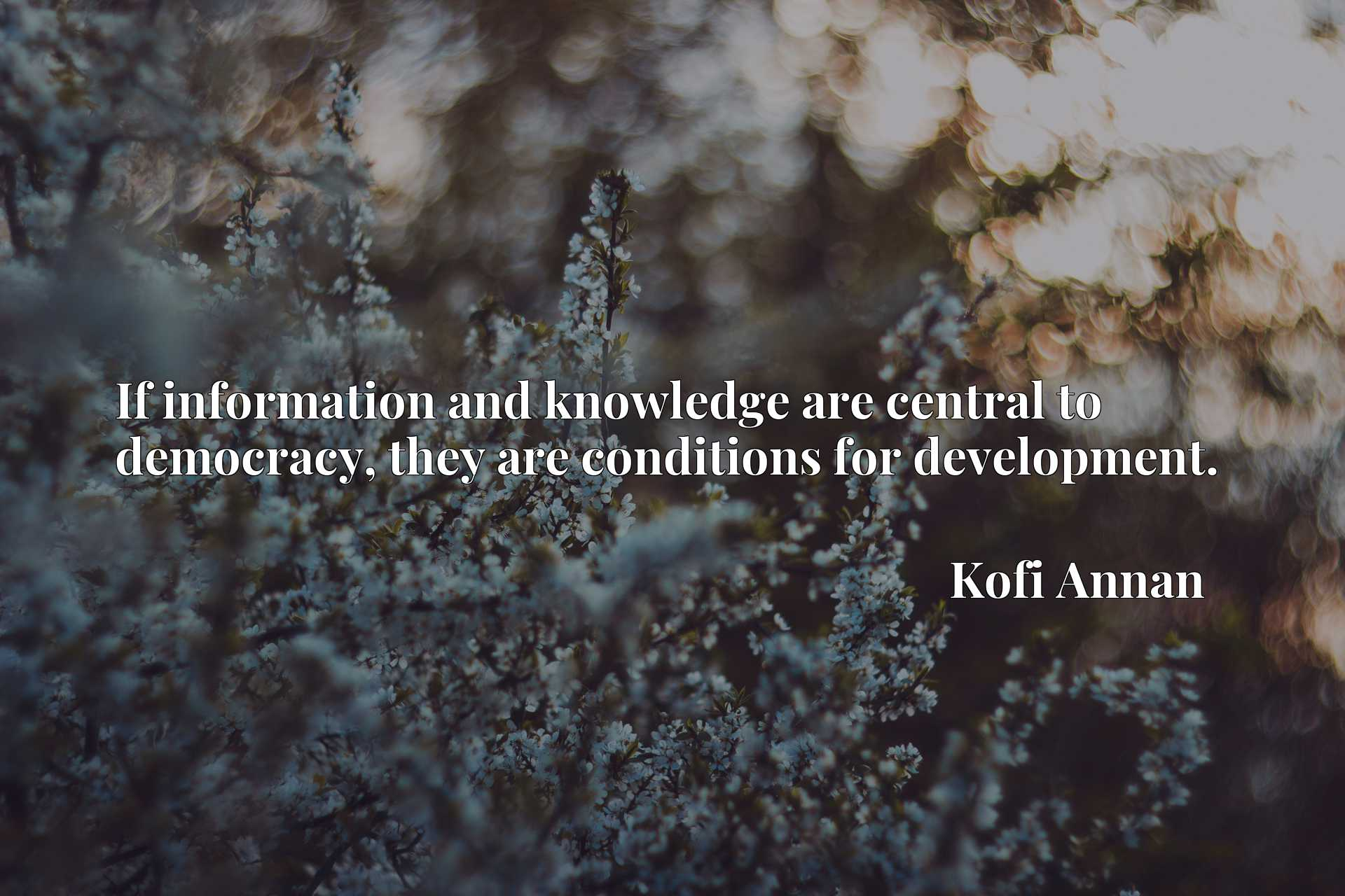 Quote Picture :If information and knowledge are central to democracy, they are conditions for development.