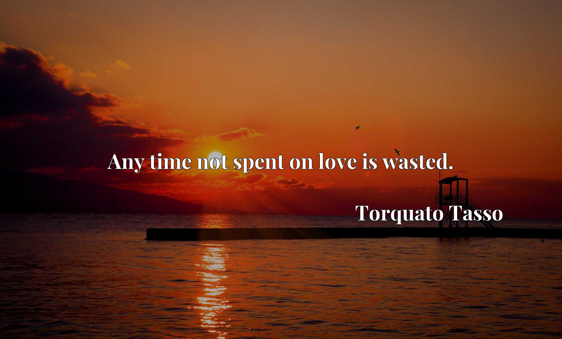Quote Picture :Any time not spent on love is wasted.