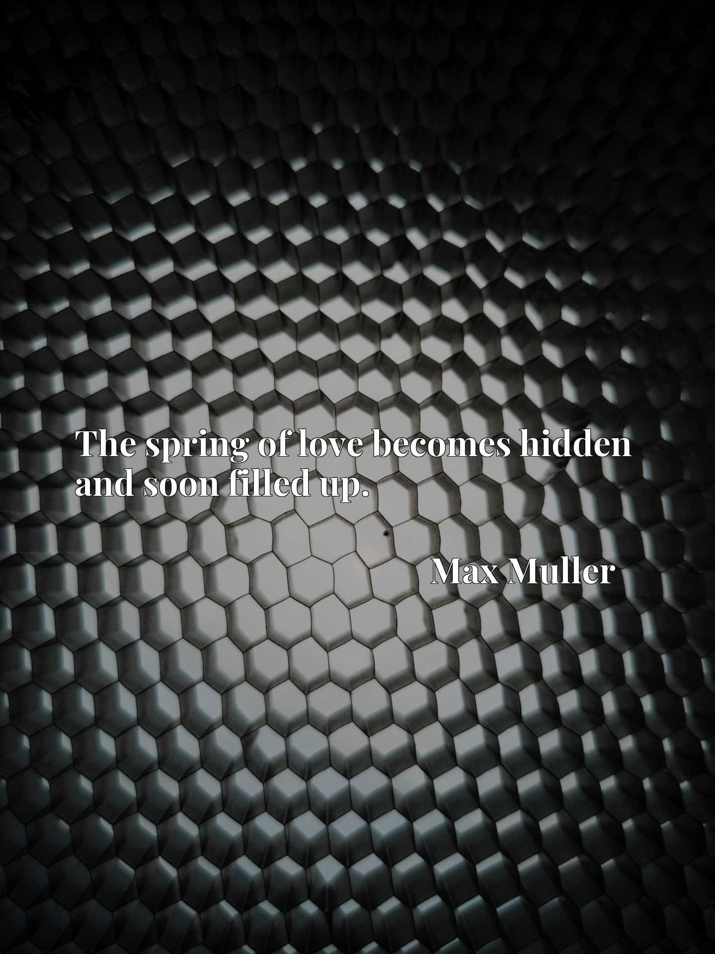 Quote Picture :The spring of love becomes hidden and soon filled up.