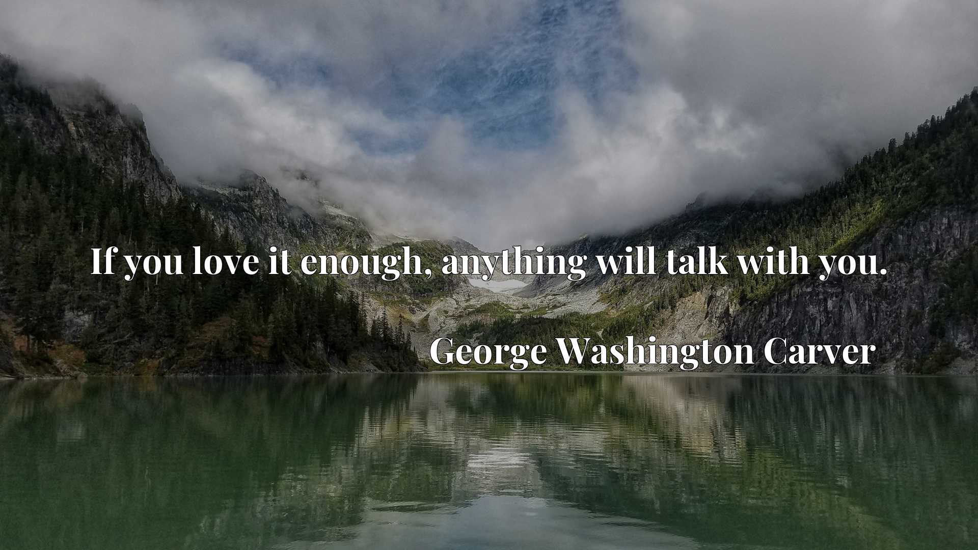 Quote Picture :If you love it enough, anything will talk with you.