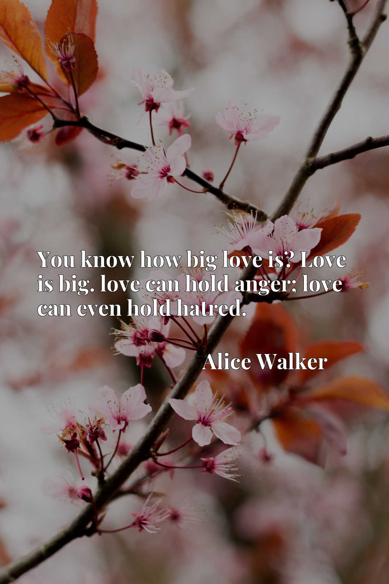Quote Picture :You know how big love is? Love is big. love can hold anger; love can even hold hatred.
