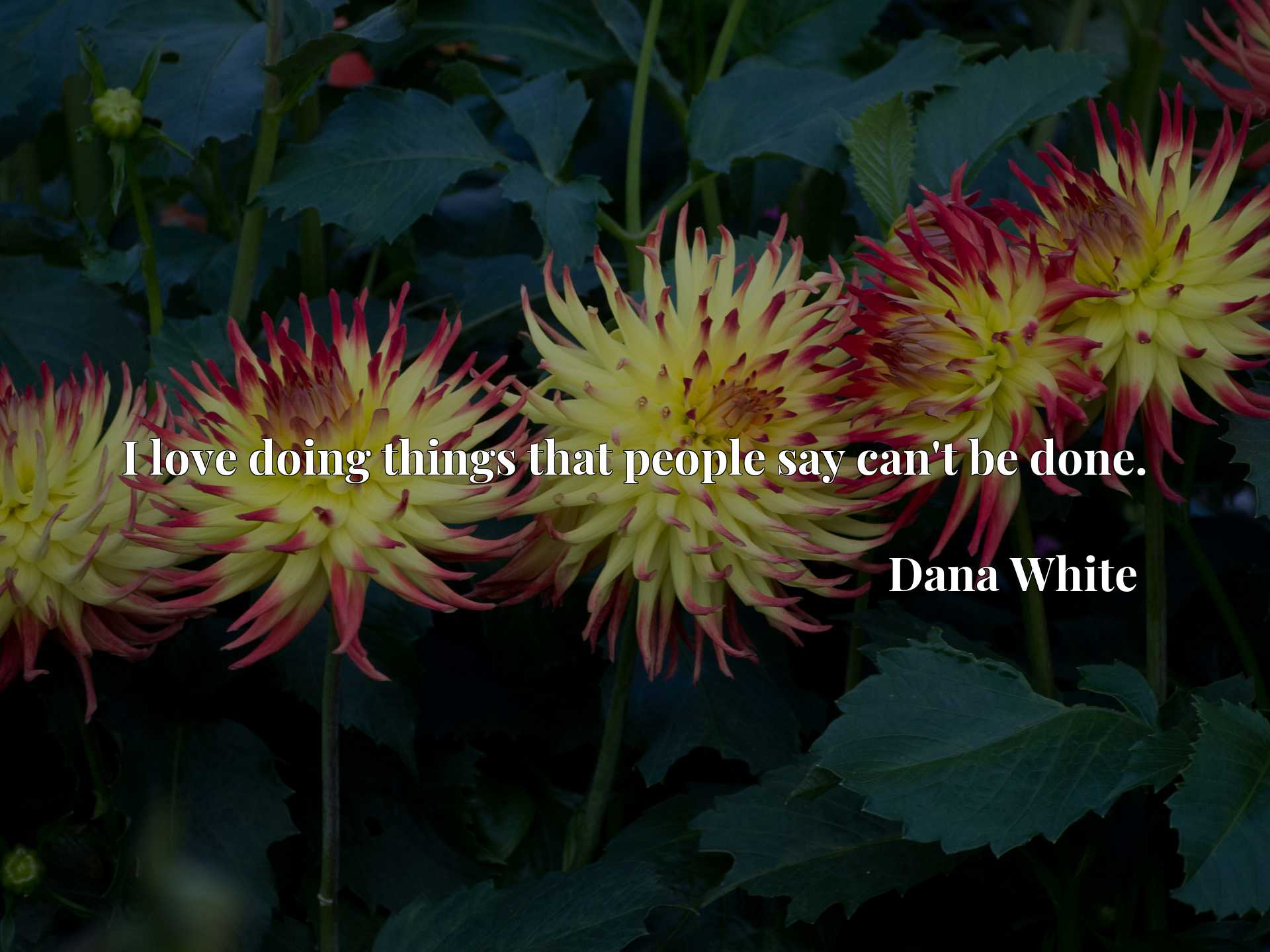 Quote Picture :I love doing things that people say can't be done.