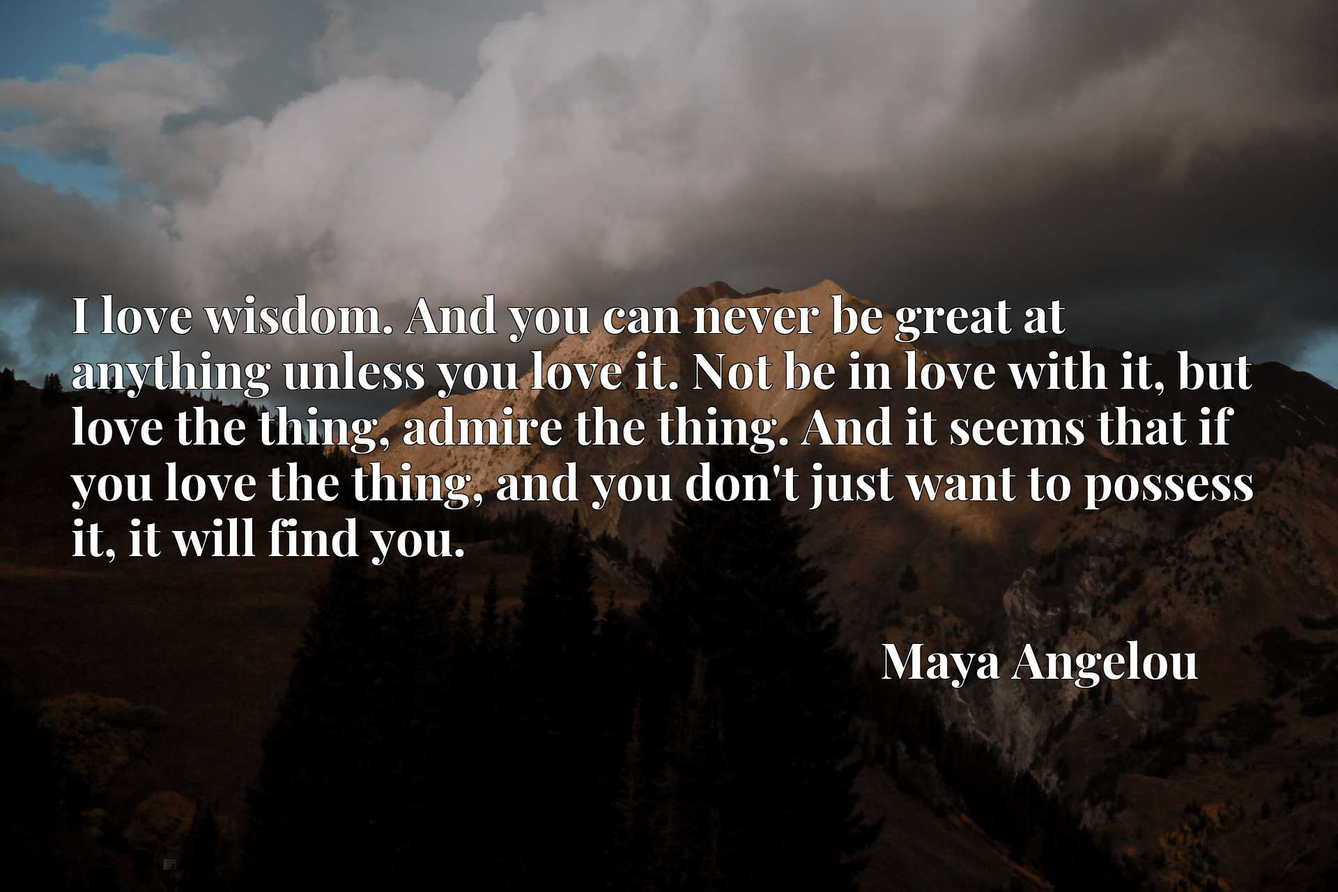 I love wisdom. And you can never be great at anything unless you love it. Not be in love with it, but love the thing, admire the thing. And it seems that if you love the thing, and you don't just want to possess it, it will find you.