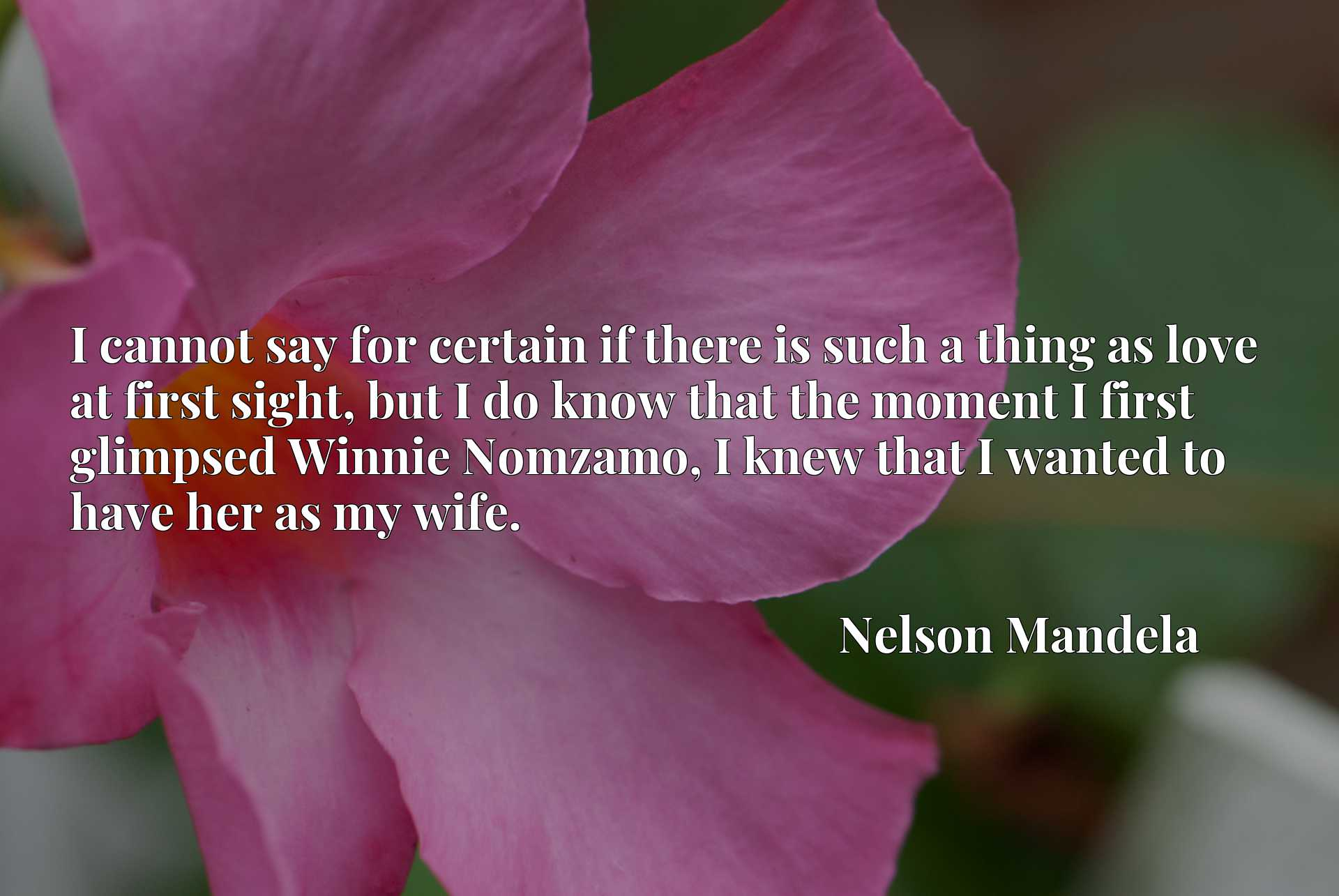 Quote Picture :I cannot say for certain if there is such a thing as love at first sight, but I do know that the moment I first glimpsed Winnie Nomzamo, I knew that I wanted to have her as my wife.