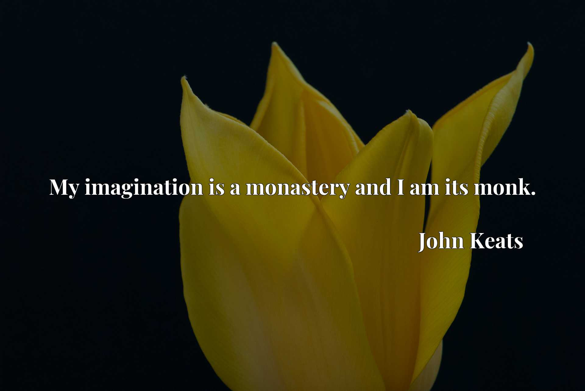 Quote Picture :My imagination is a monastery and I am its monk.