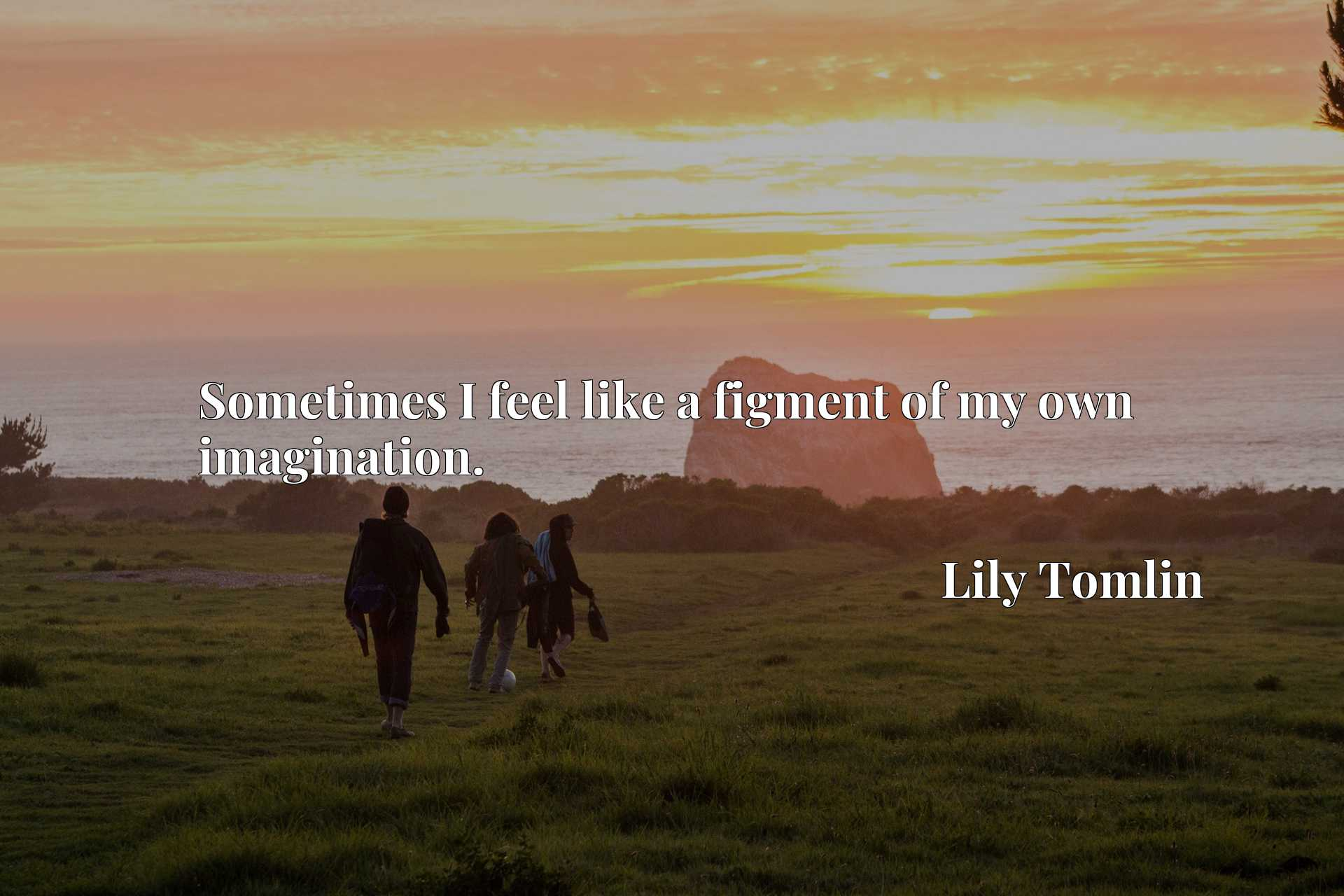 Quote Picture :Sometimes I feel like a figment of my own imagination.