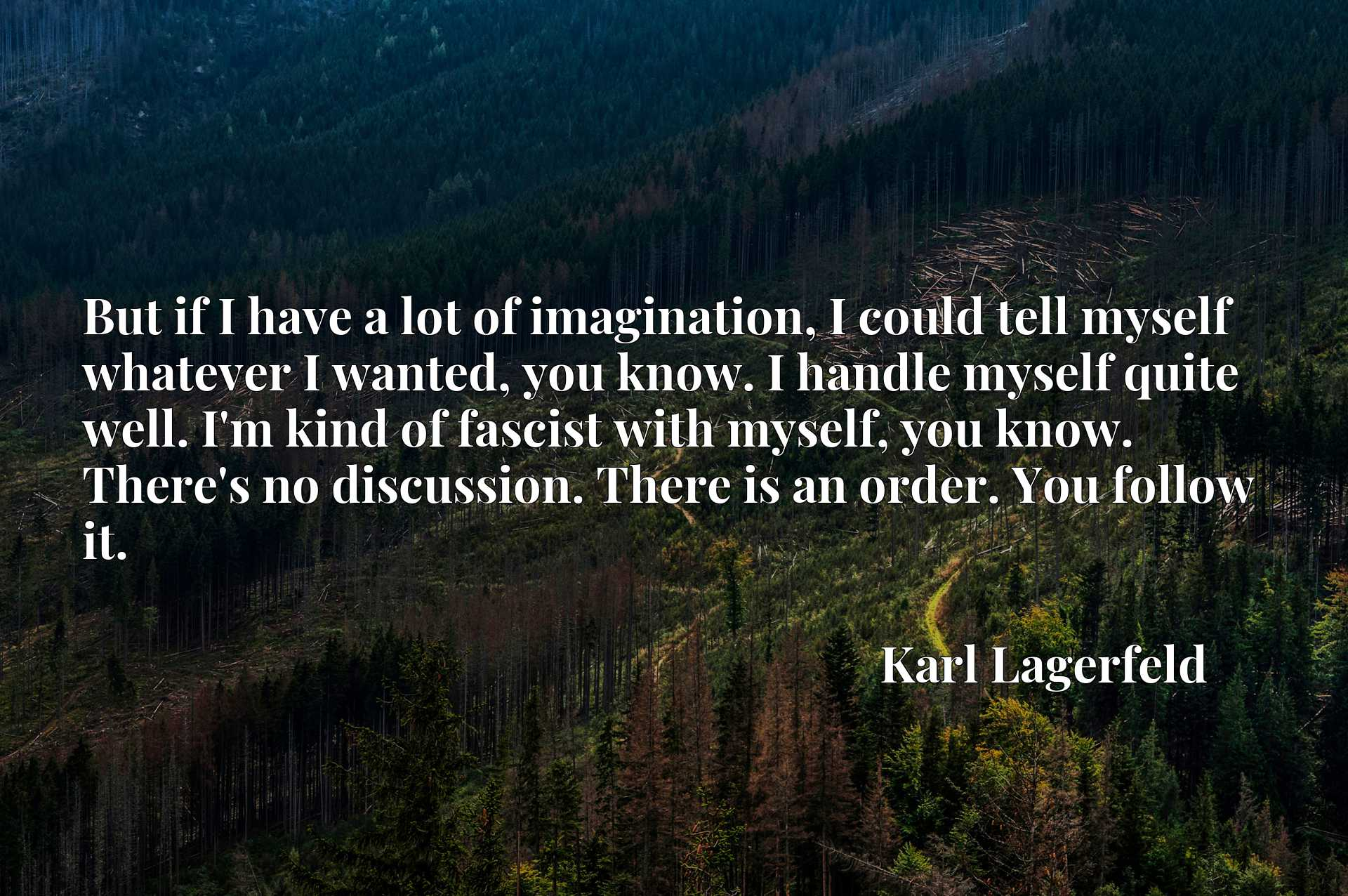 But if I have a lot of imagination, I could tell myself whatever I wanted, you know. I handle myself quite well. I'm kind of fascist with myself, you know. There's no discussion. There is an order. You follow it.